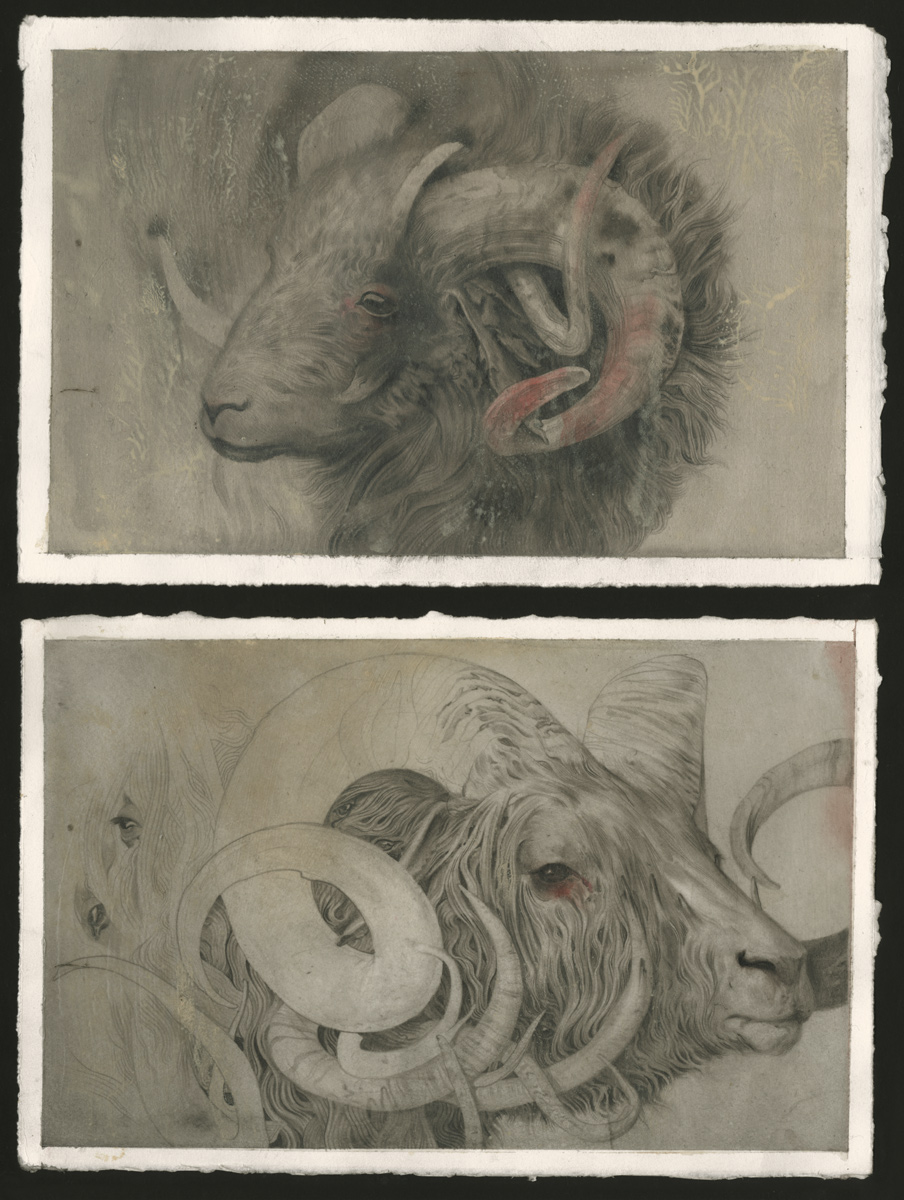 """Ram Studies - II & I"" Watercolor and Acrylic on Fabriano 16 x 24 cm"