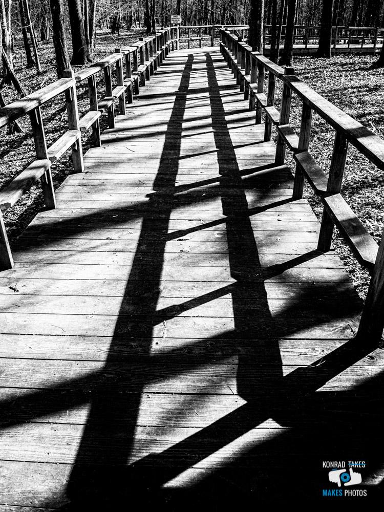 Winter-Walk-Black-and-White-3.jpg