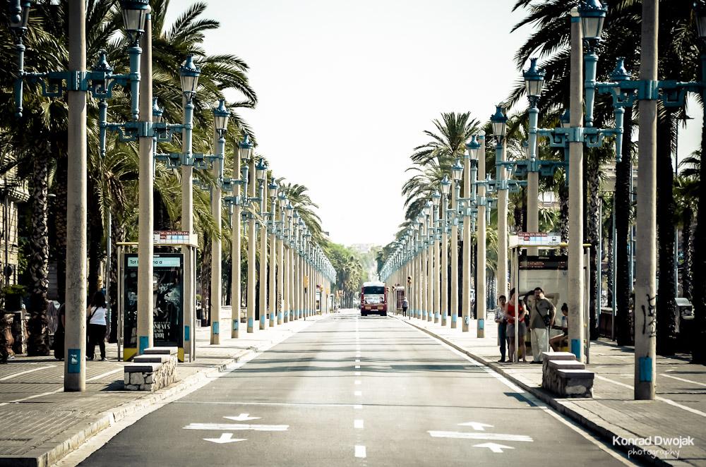 Konrad_Dwojak_Barcelona_2012-6.jpg