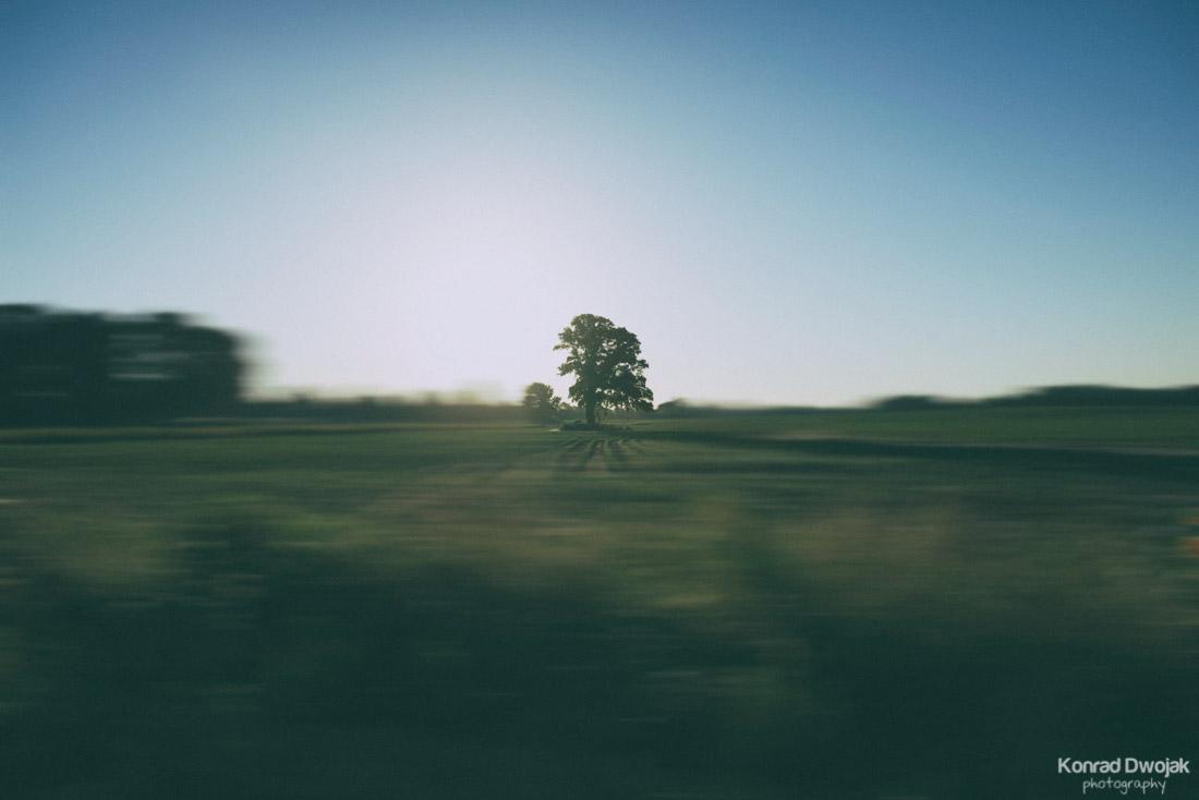 Motionless-1.jpg