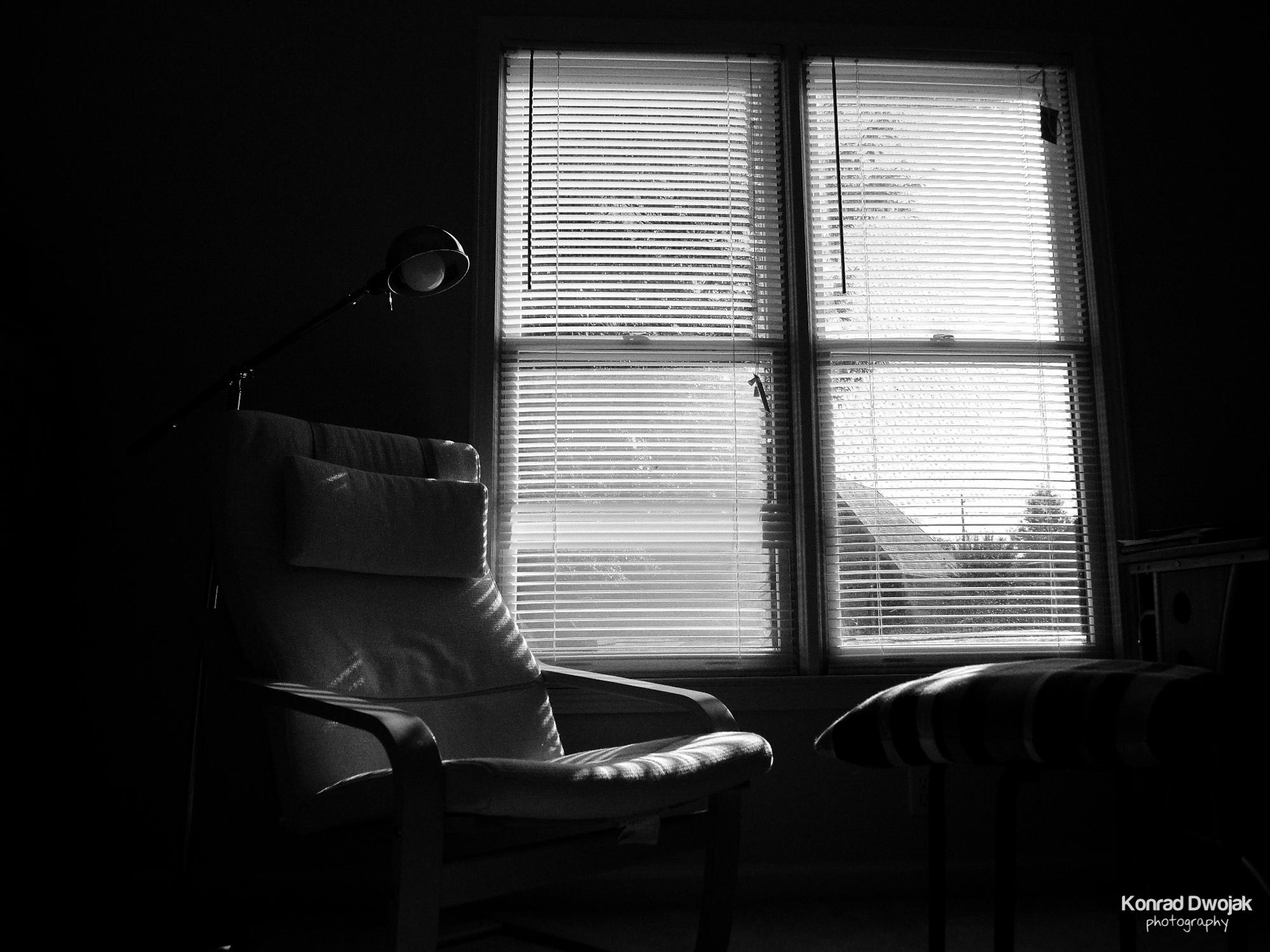 Morning view-7.jpg