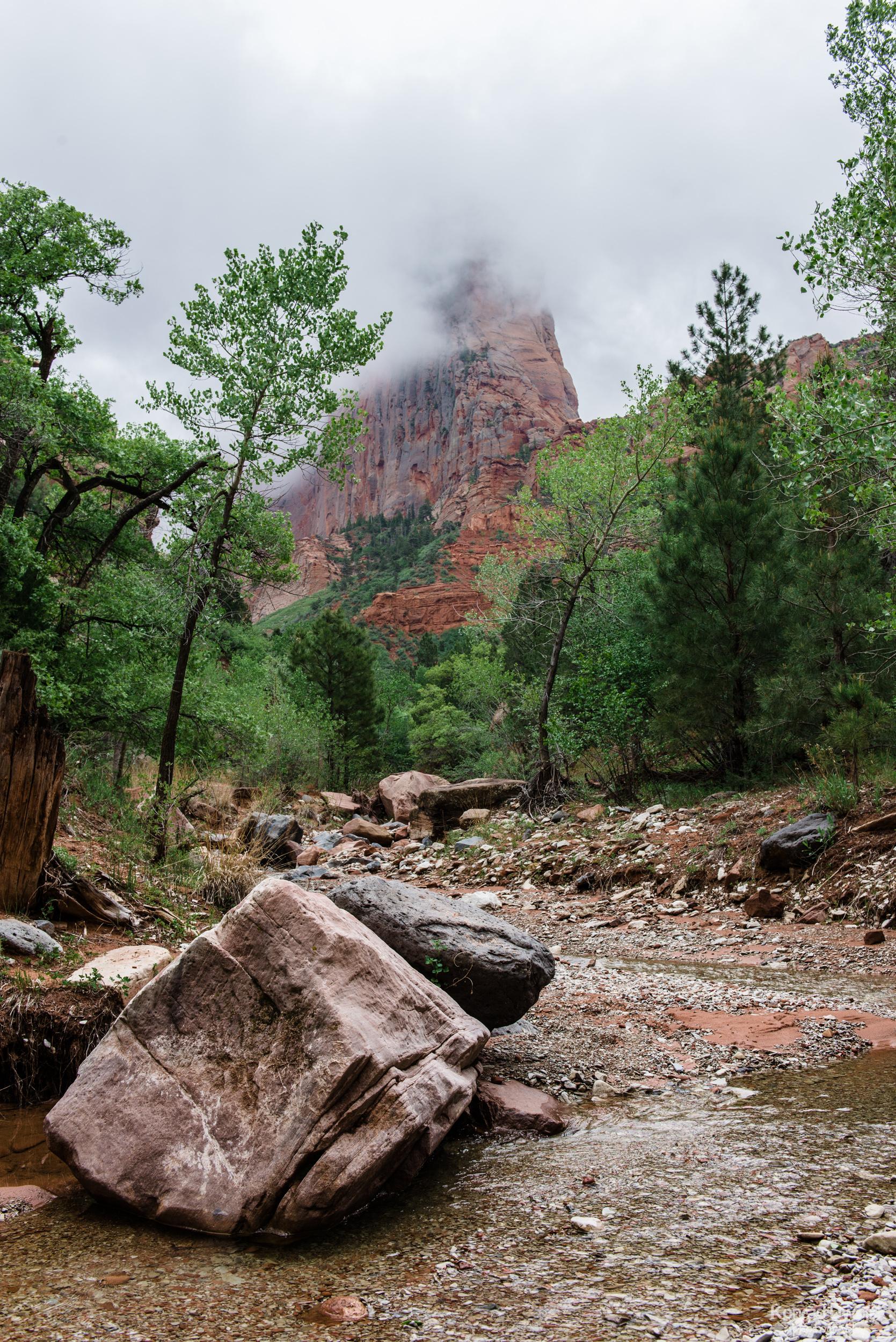 Taylor Creek Trail in Kolob Canyons