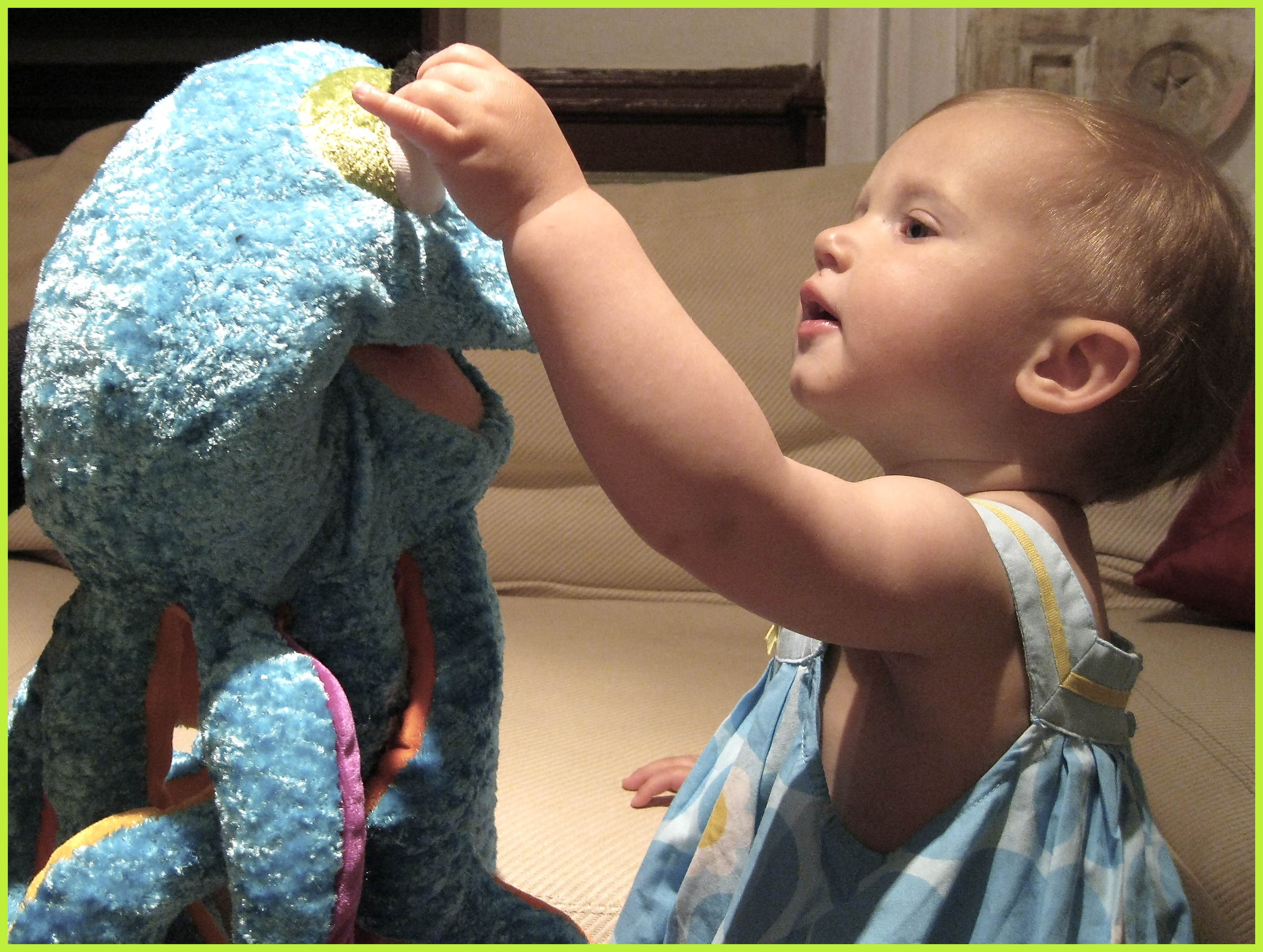 A one year old meeting Olympia Octopus