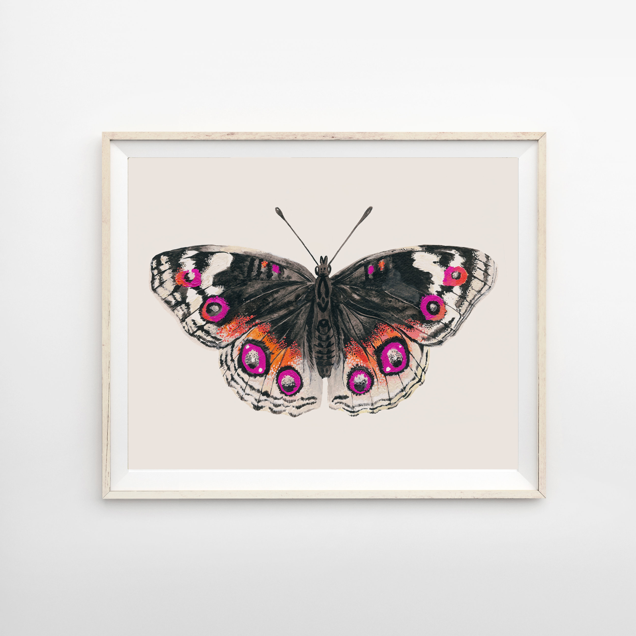 butterfly pink frame.jpg