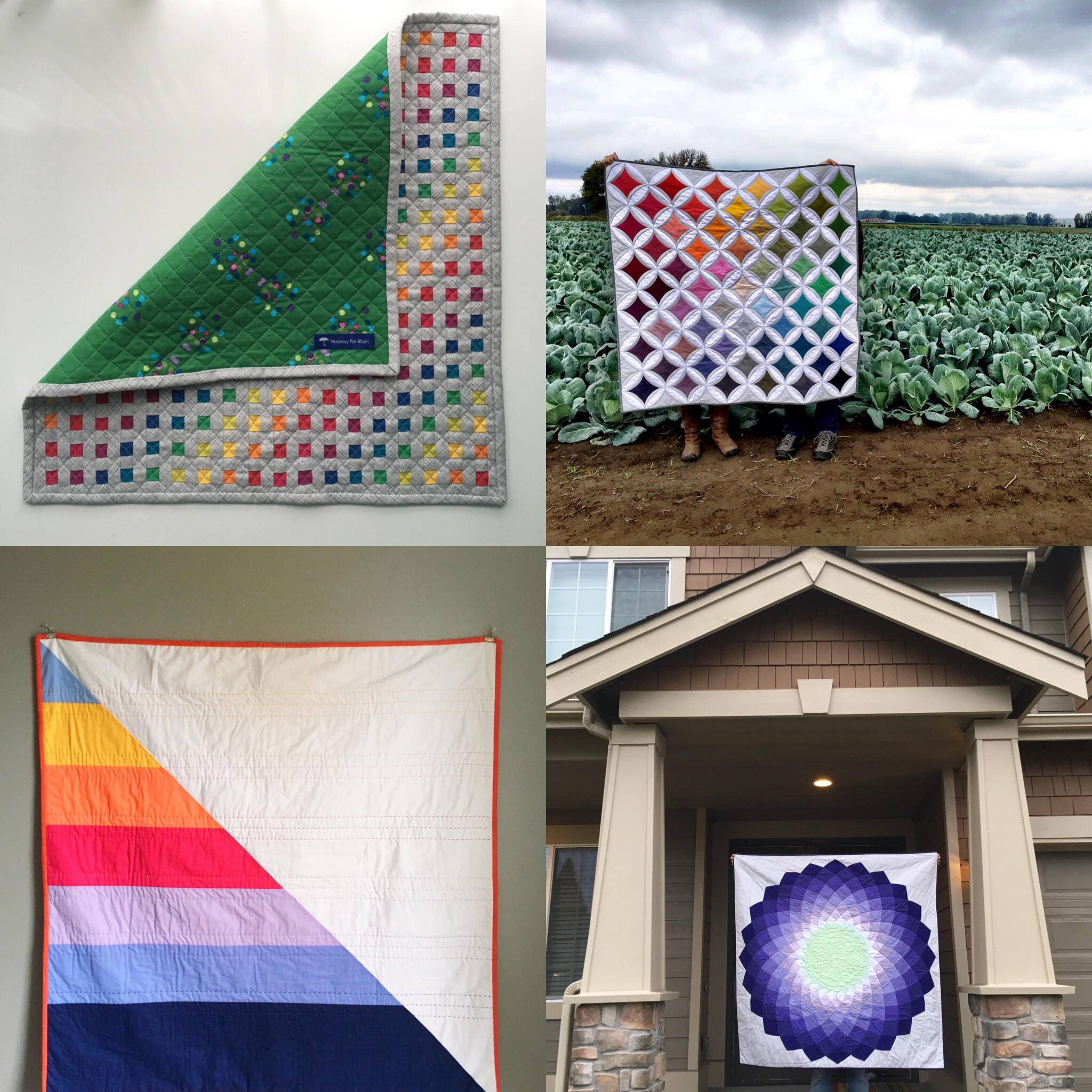 Hooray for Rain - Four More Quilt Finishes for  2016