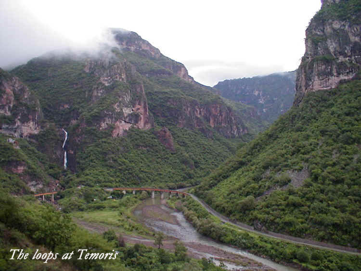 The lovely green of summer in the Copper Canyon