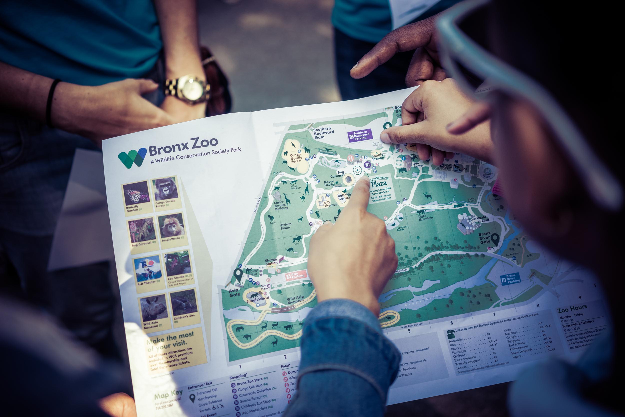 zoo impact 2016-9.jpg