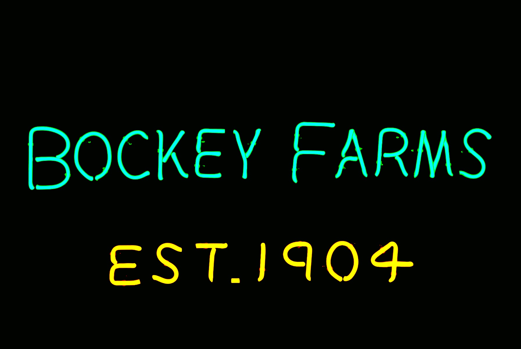 Bockey Farms - Commercial Neon Sign.jpg