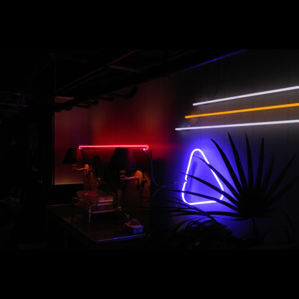 Custom Neon Mood Lighting by John Barton - BartonNeonMagic.com