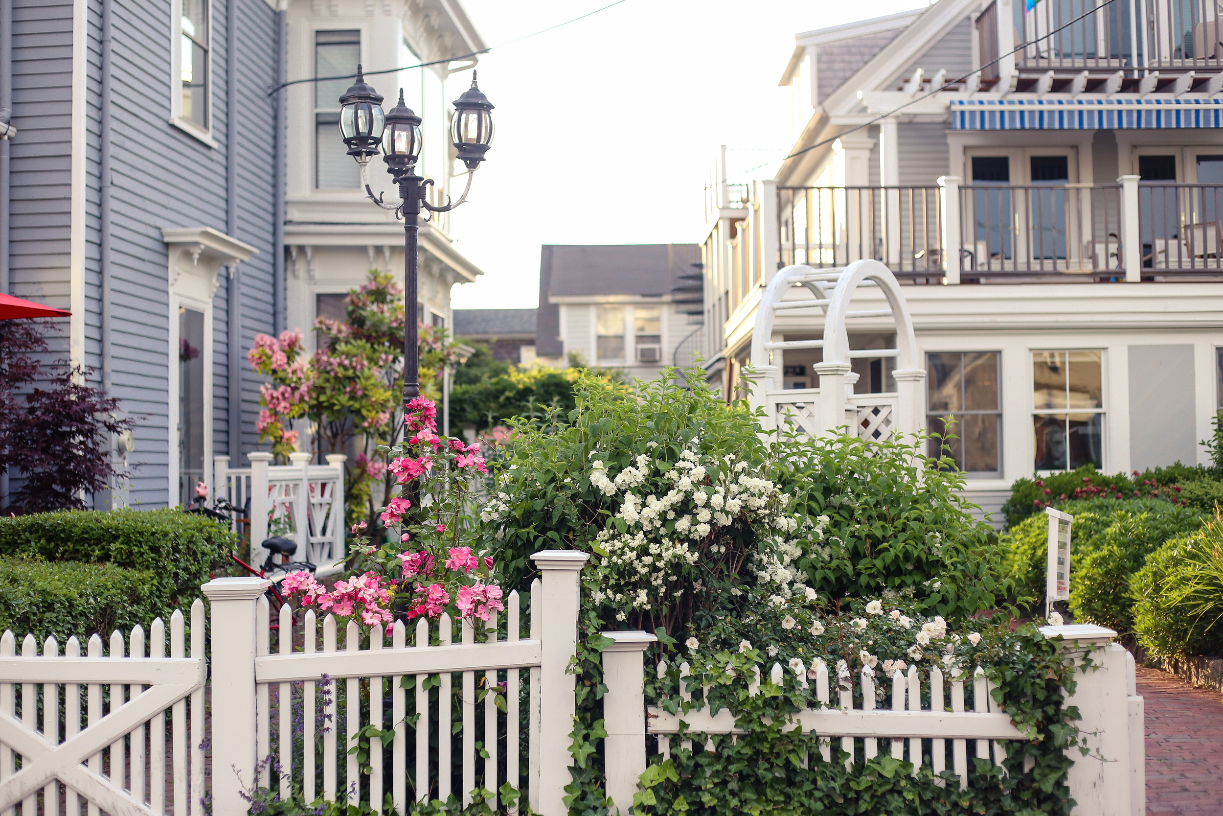 Cape Cod- Enchanting Elegance