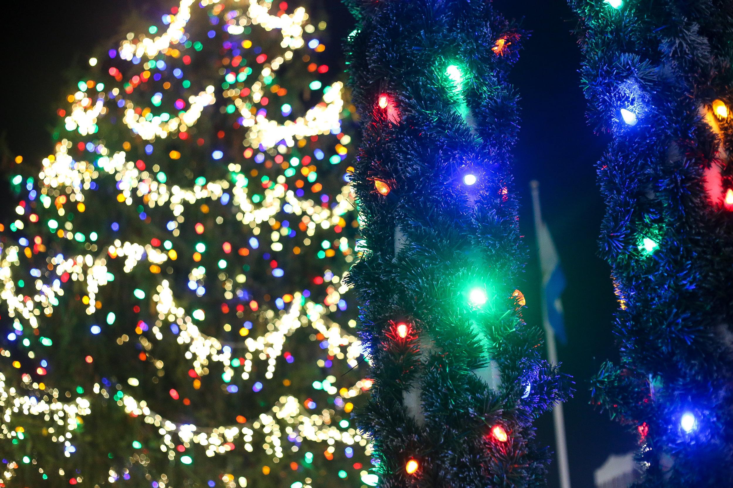 Rehoboth Beach Tree Lighting- Enchanting Elegance