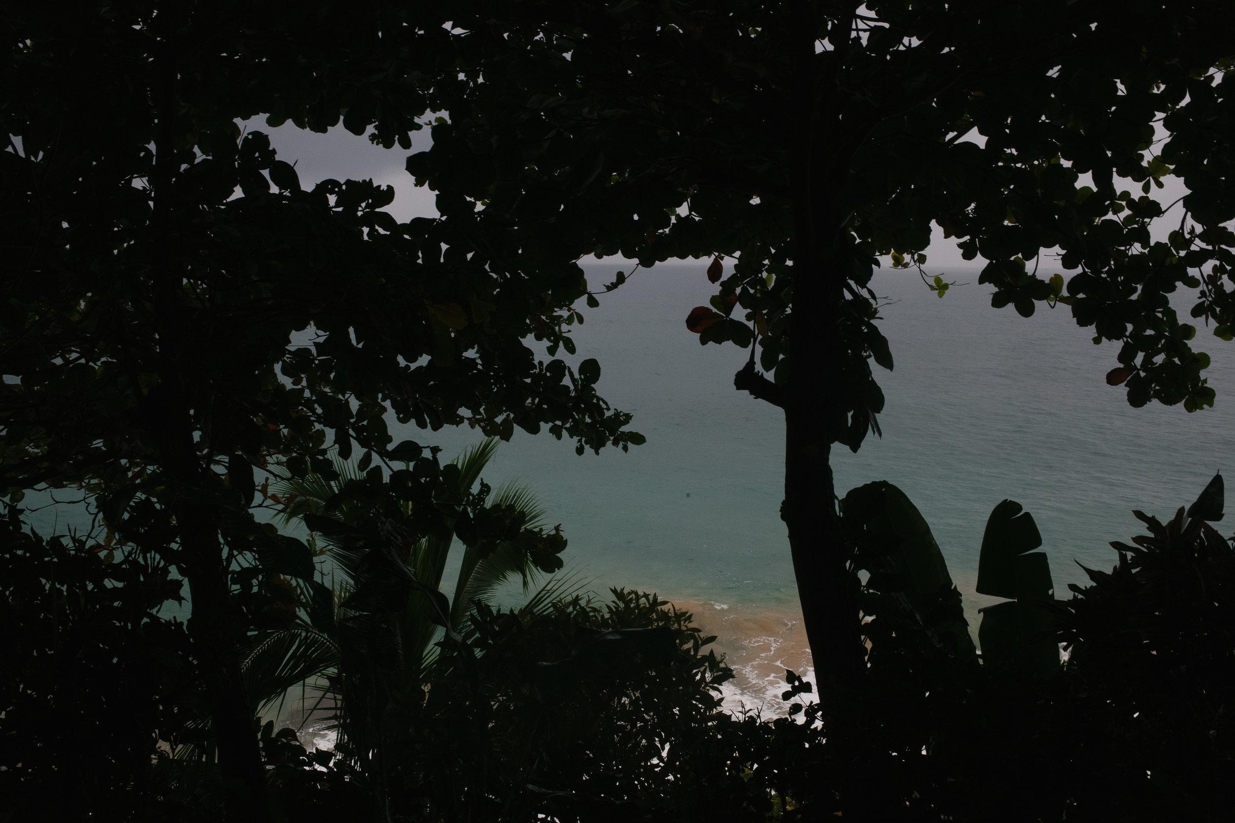 Bocas del Toro (34 of 34).jpg