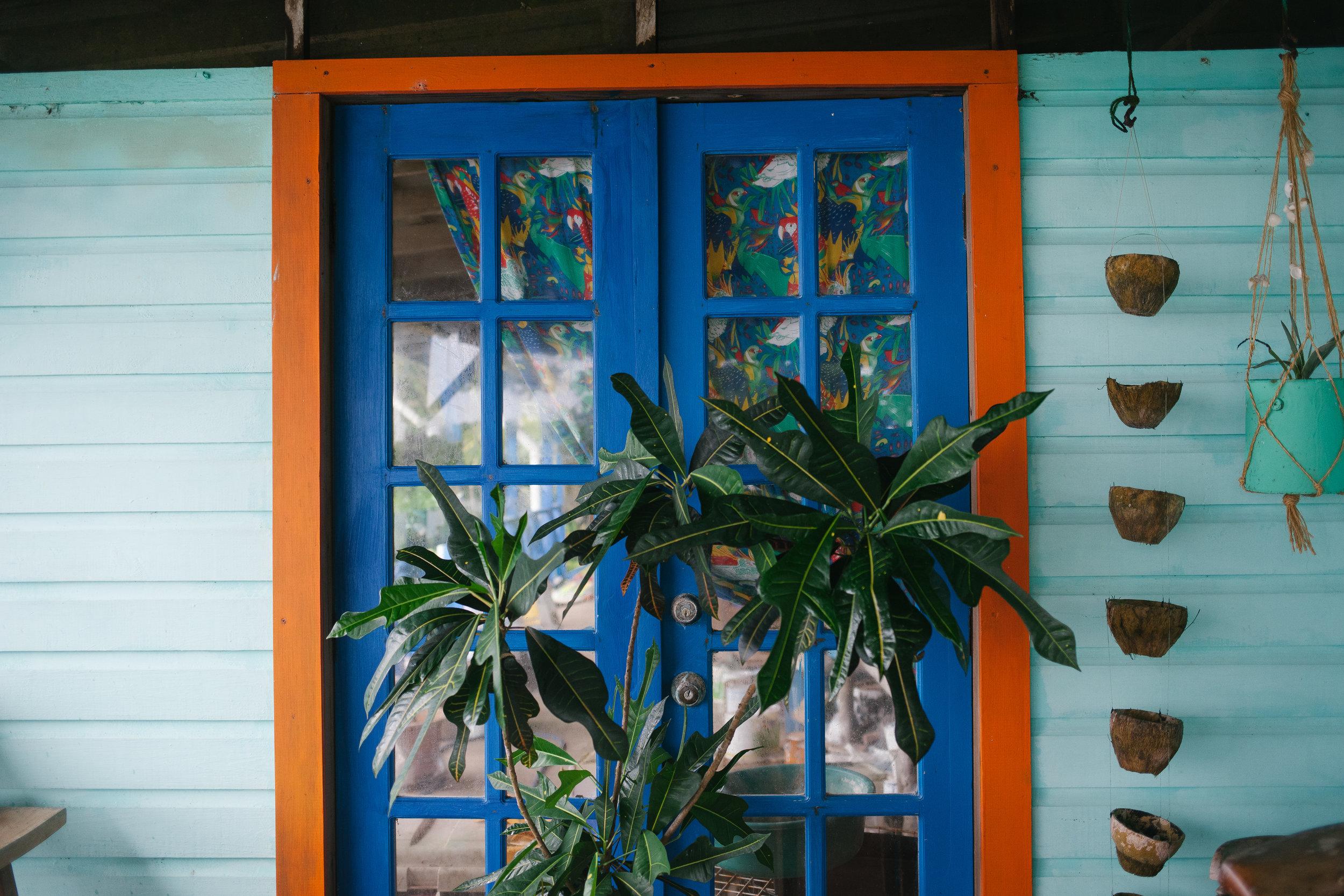 Bocas del Toro (29 of 34).jpg