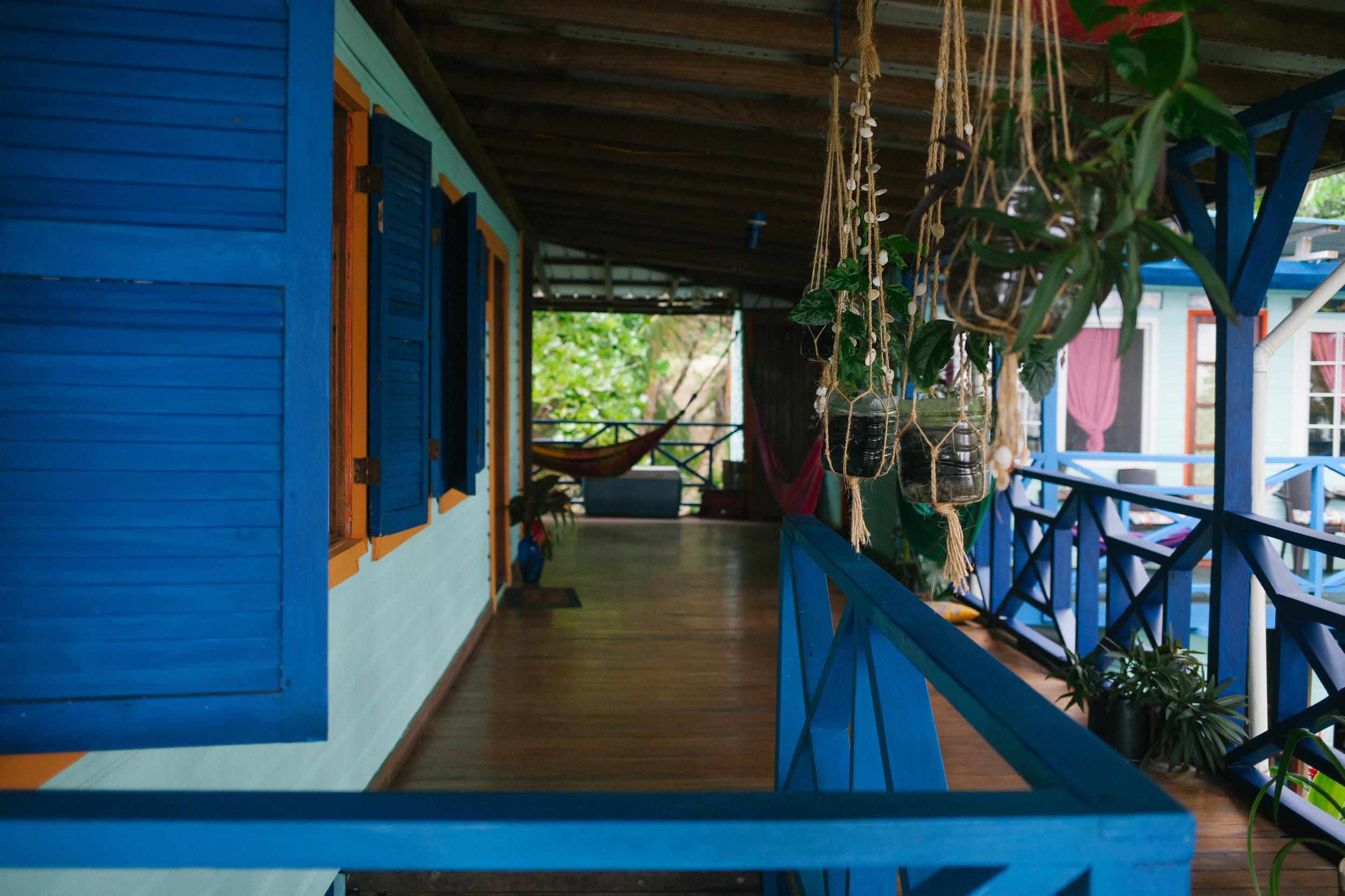 Bocas del Toro (27 of 34).jpg
