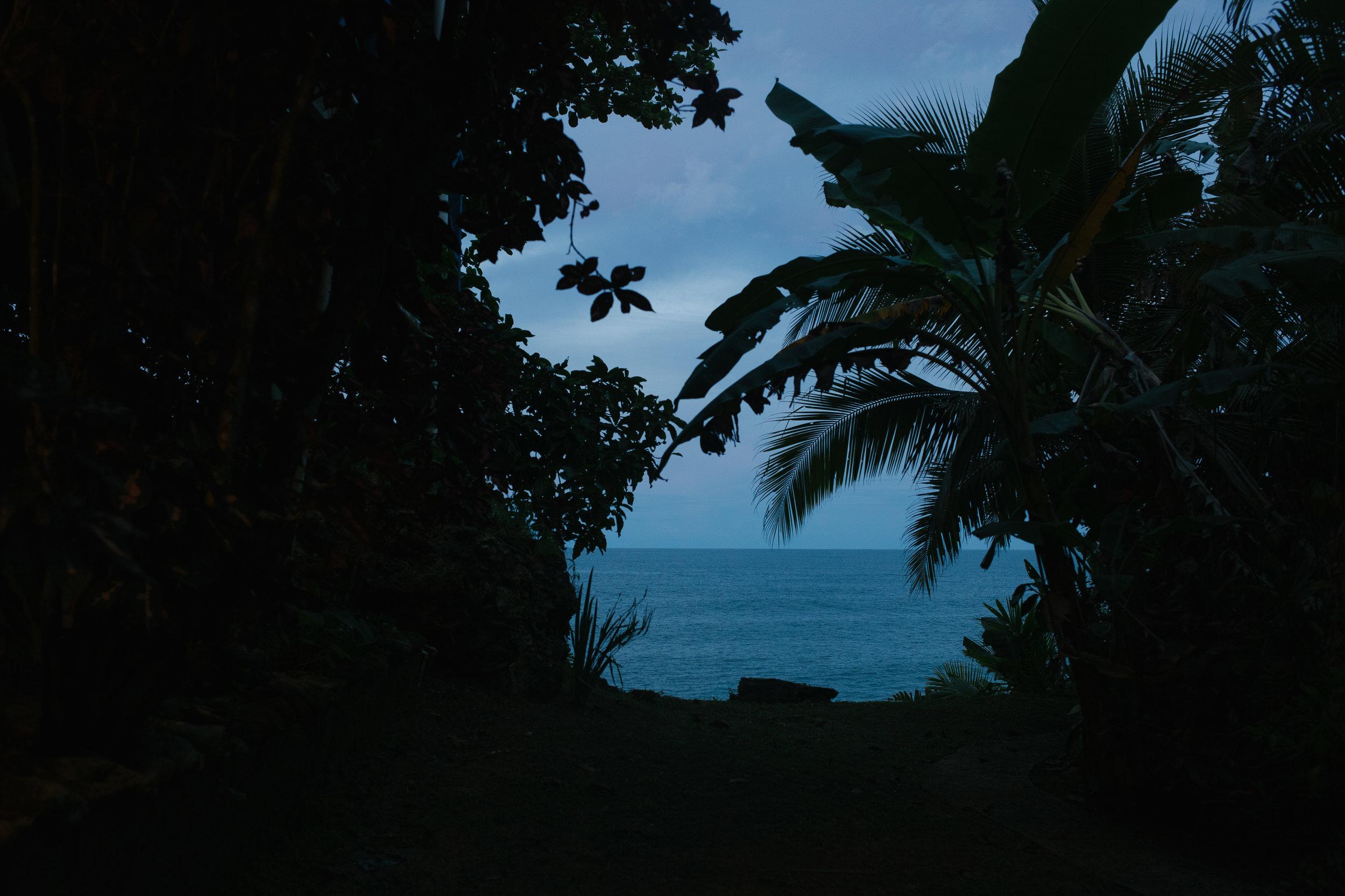 Bocas del Toro (17 of 34).jpg