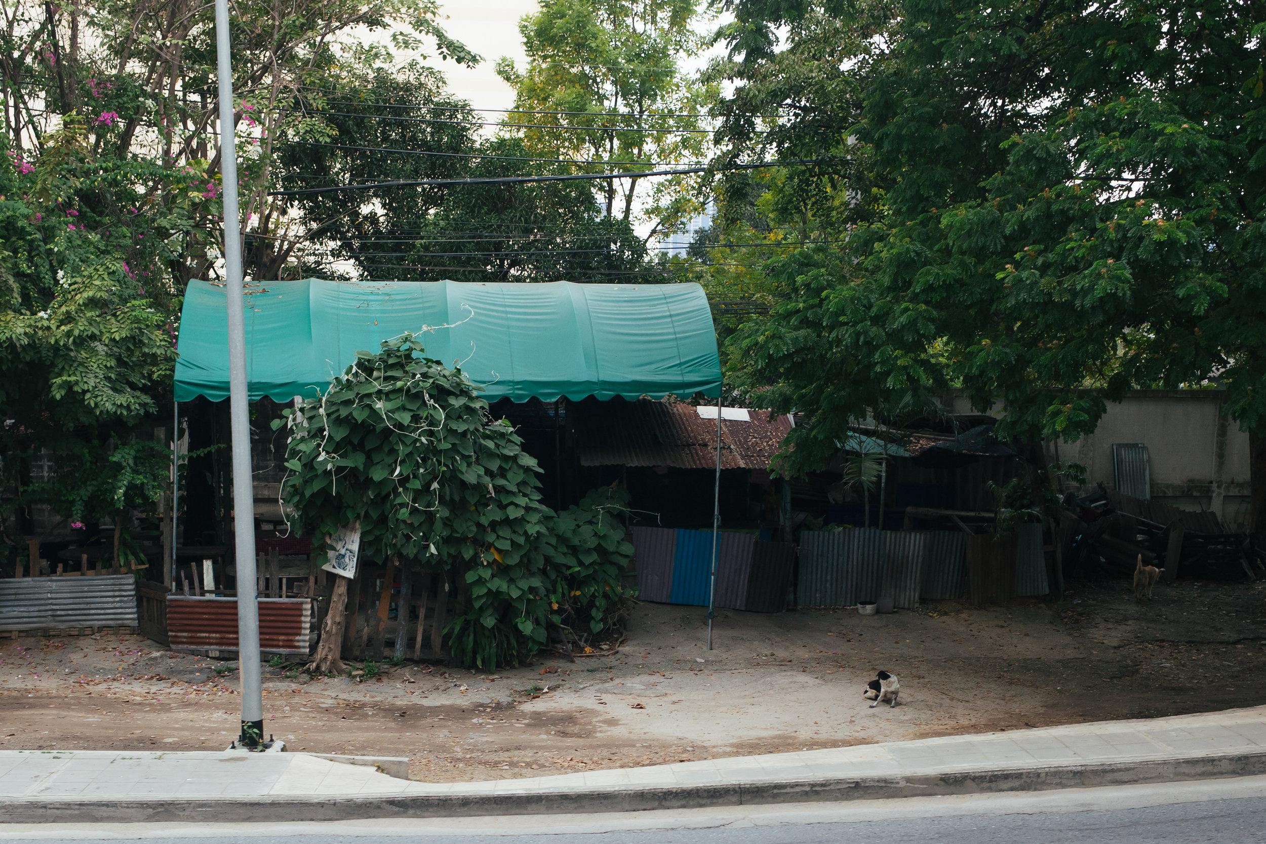 thailand_lampang_ayuthaya_train (63 of 77).jpg