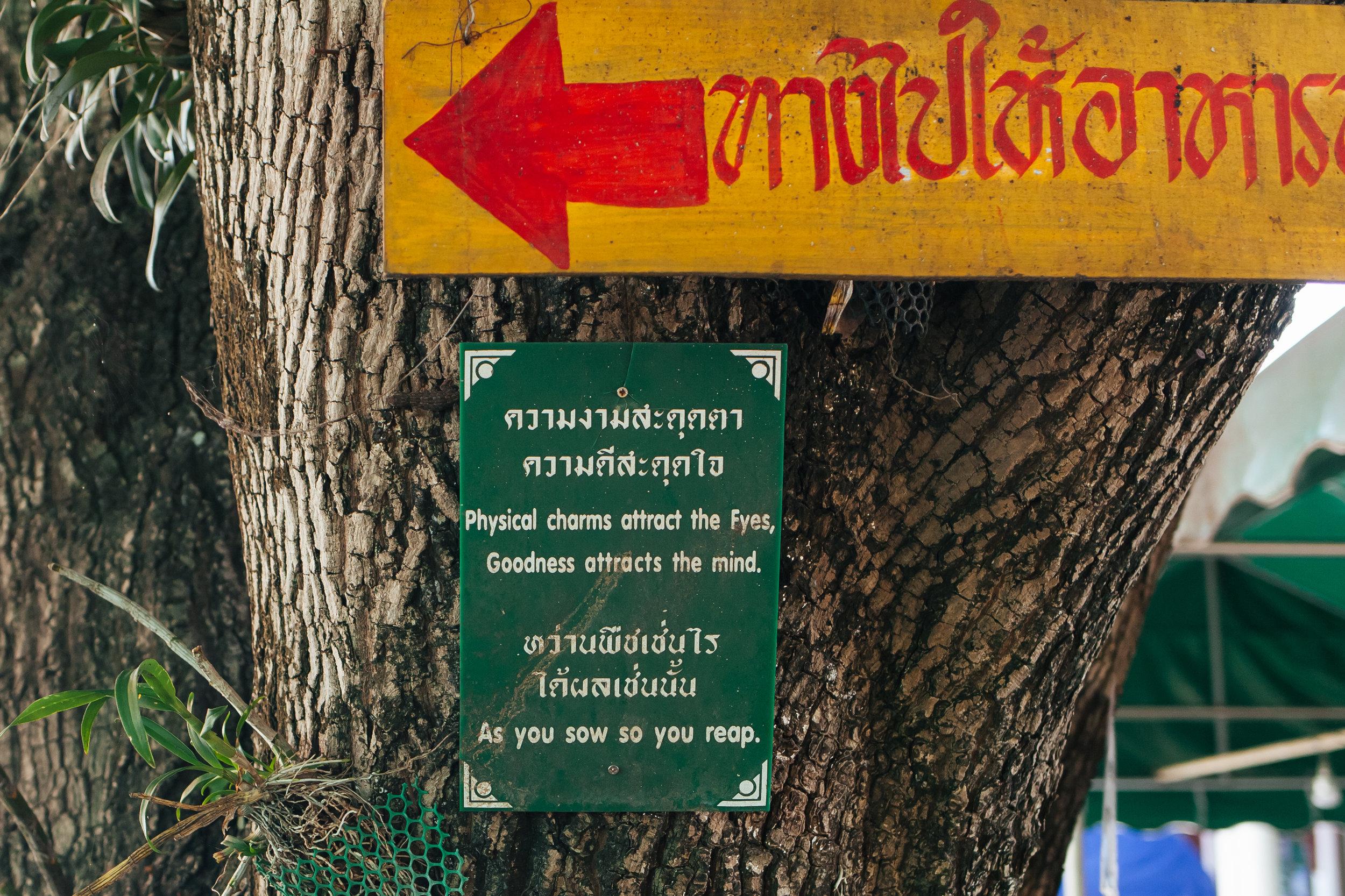 thailand_lampang_ayuthaya_train (14 of 77).jpg
