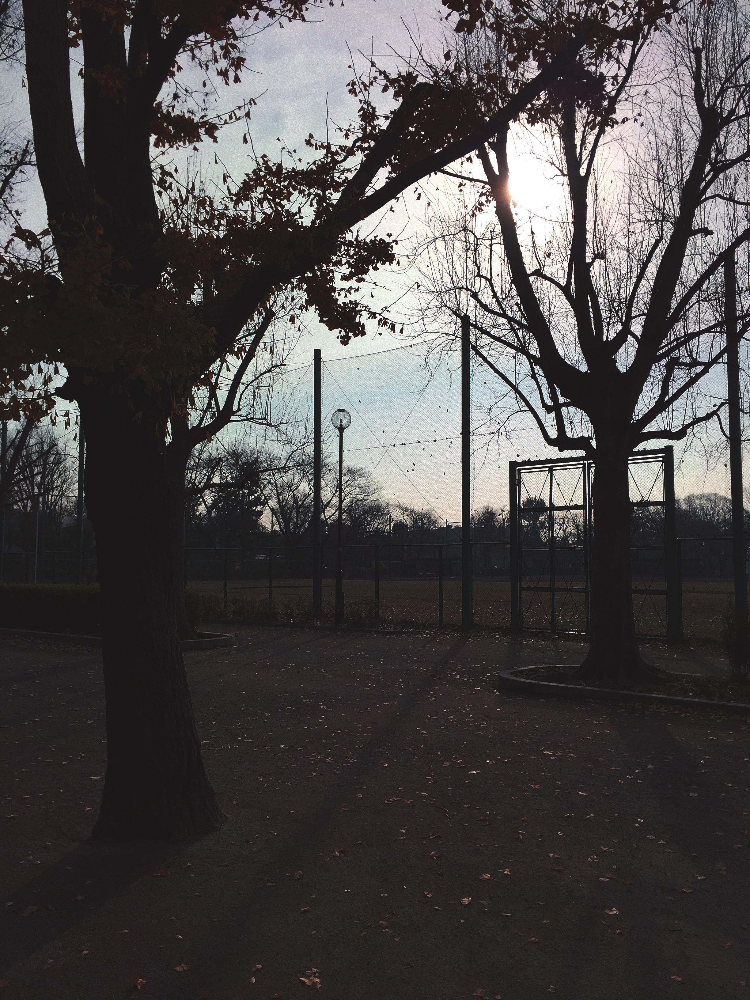 hanegi-park