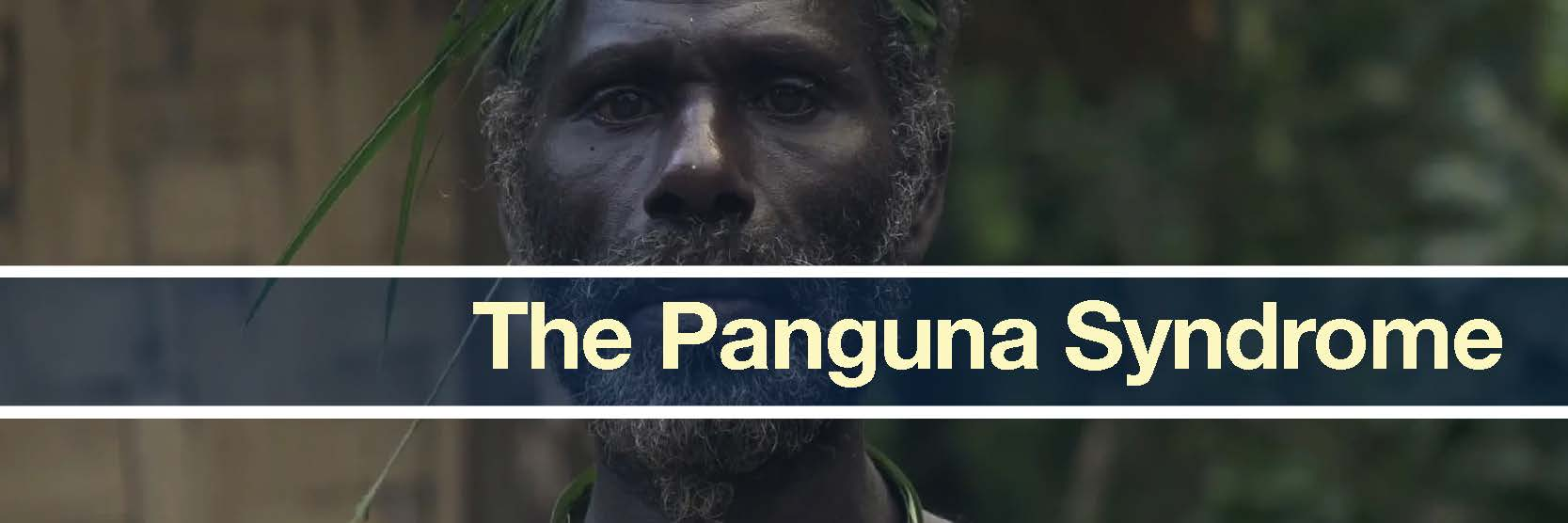 the panguna syndrome banner.jpg