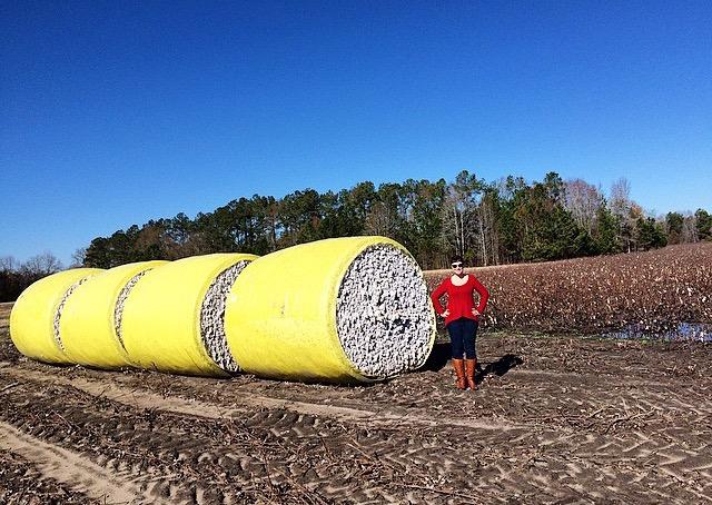 So much cotton.