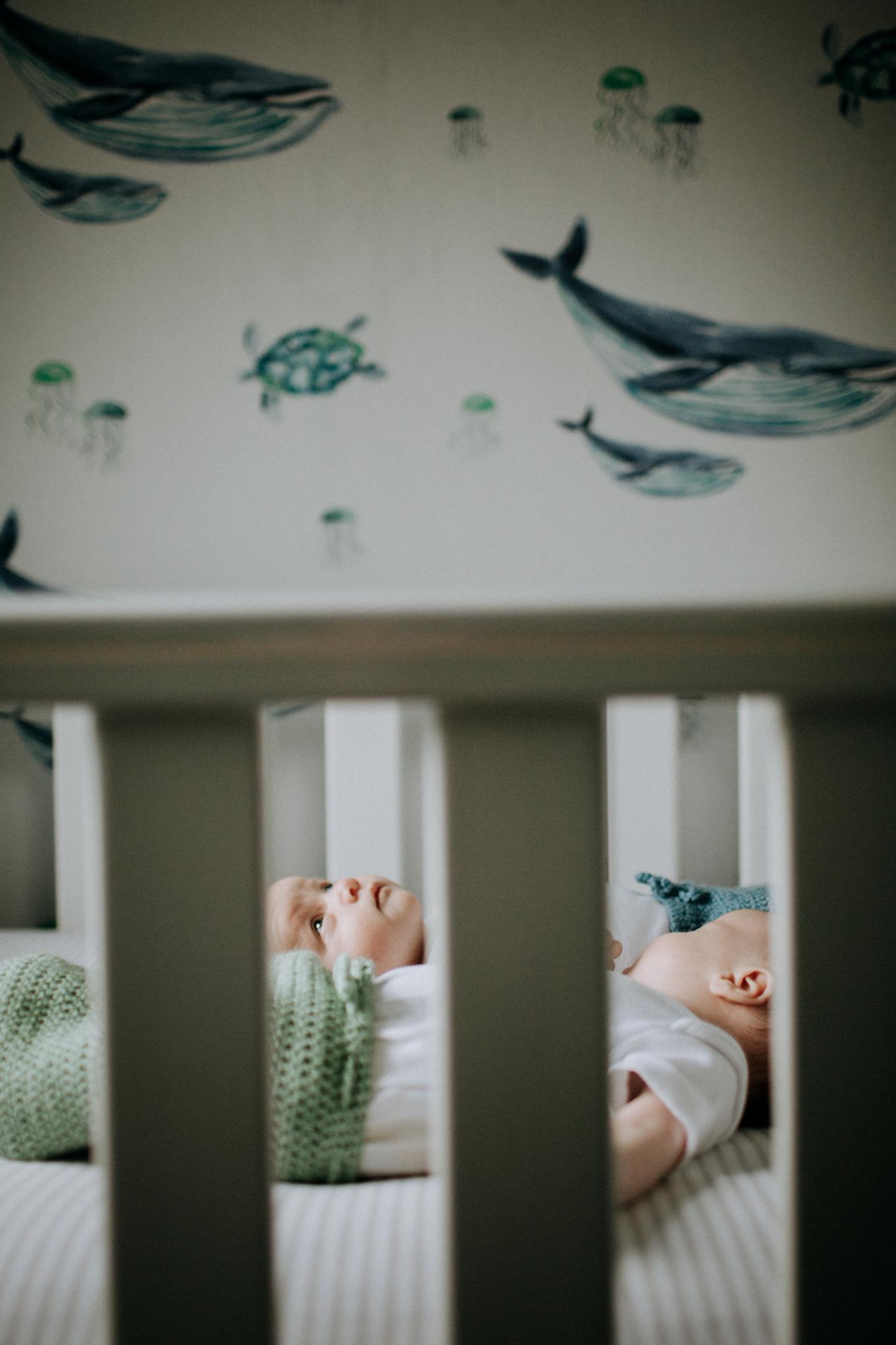 modern newborn photography