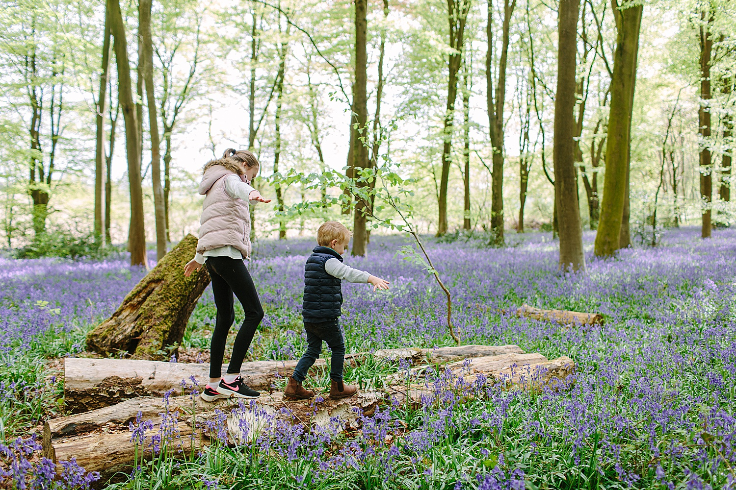 hampshire bluebell photographer