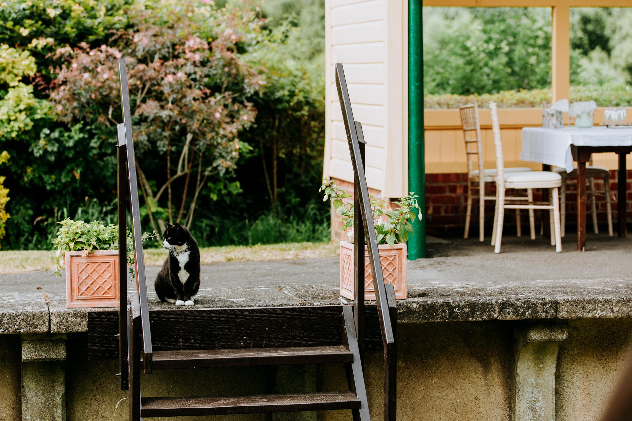 Hampshire Wedding Photographer-3.jpg