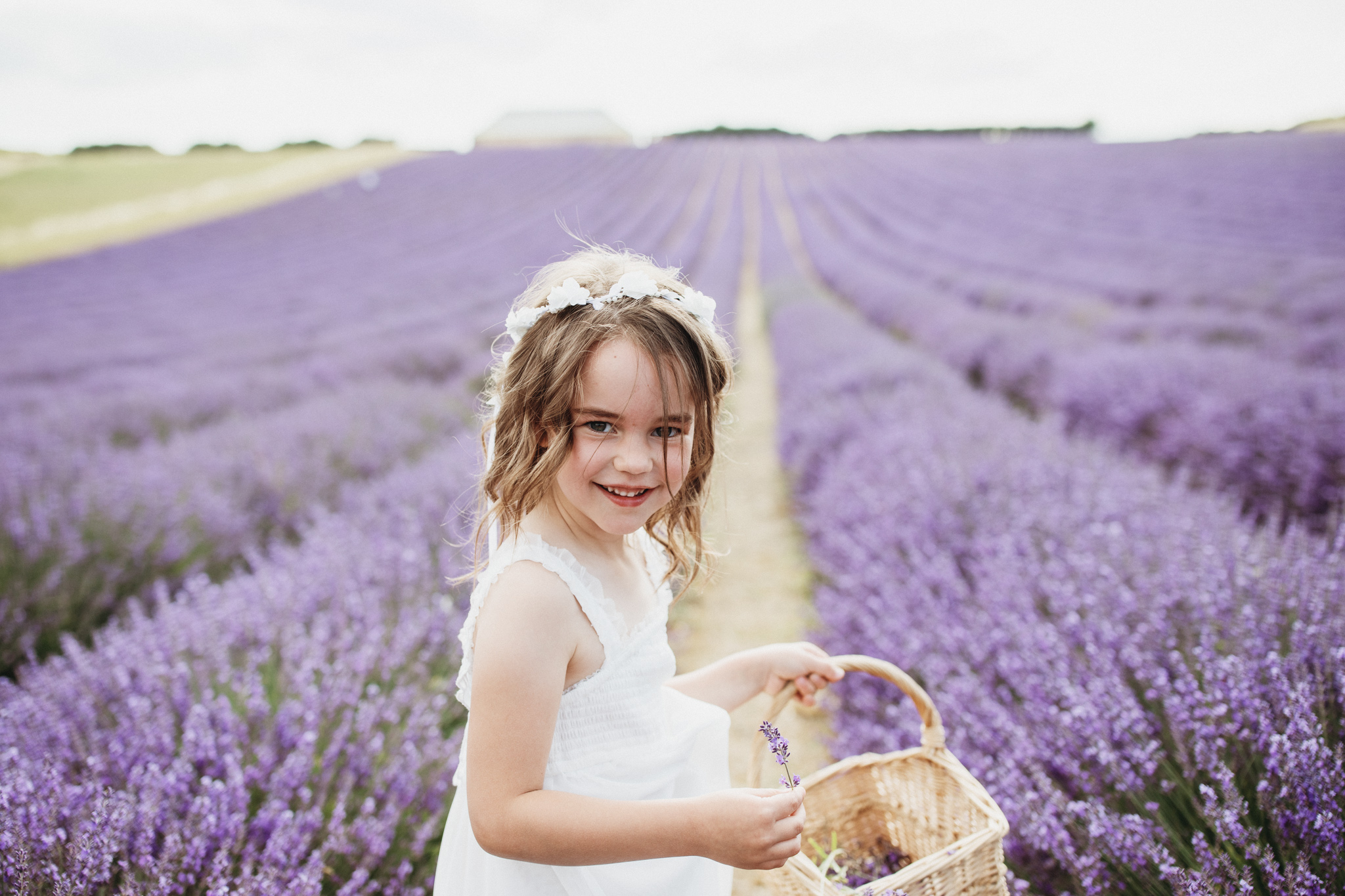 Hampshire Lavender Photographer-3.jpg