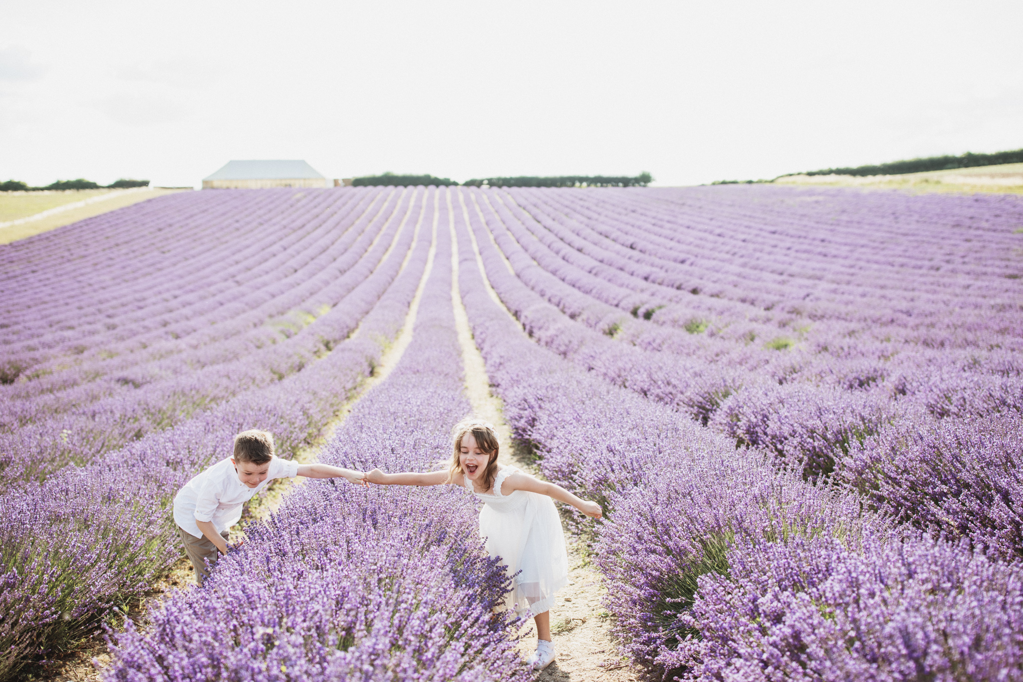 Hampshire Lavender Photographer-6.jpg