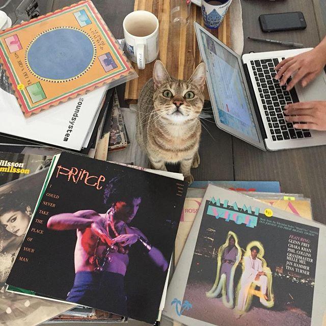 #YES #miami #miamilife #vinyl #vinylcommunity #twiggystardust
