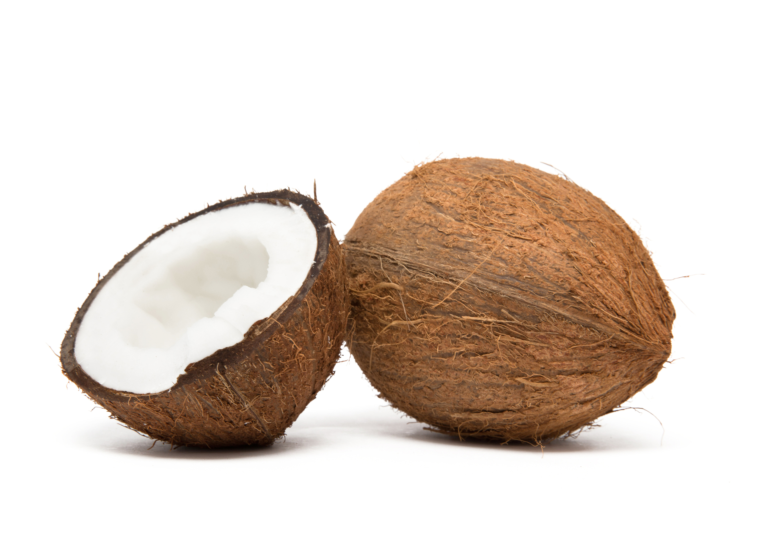 bigstock-coconut-cut-in-half-on-white-b-62636579.jpg