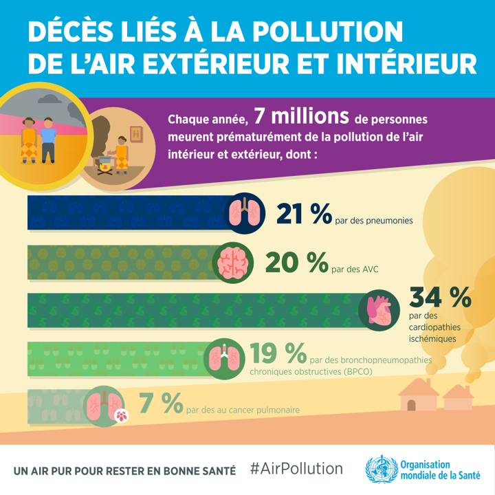 Décès pollution air