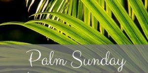 Palm Sunday Info Sma.jpg