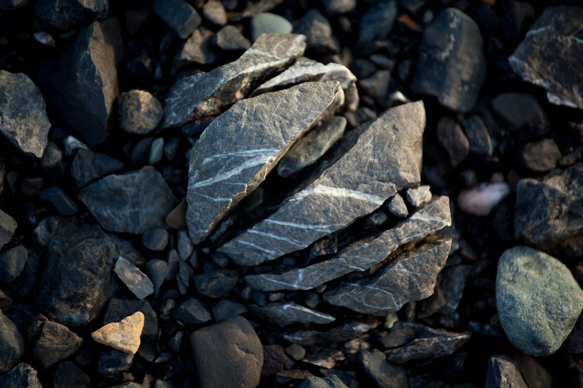 arctic-svalbard-0918.jpg