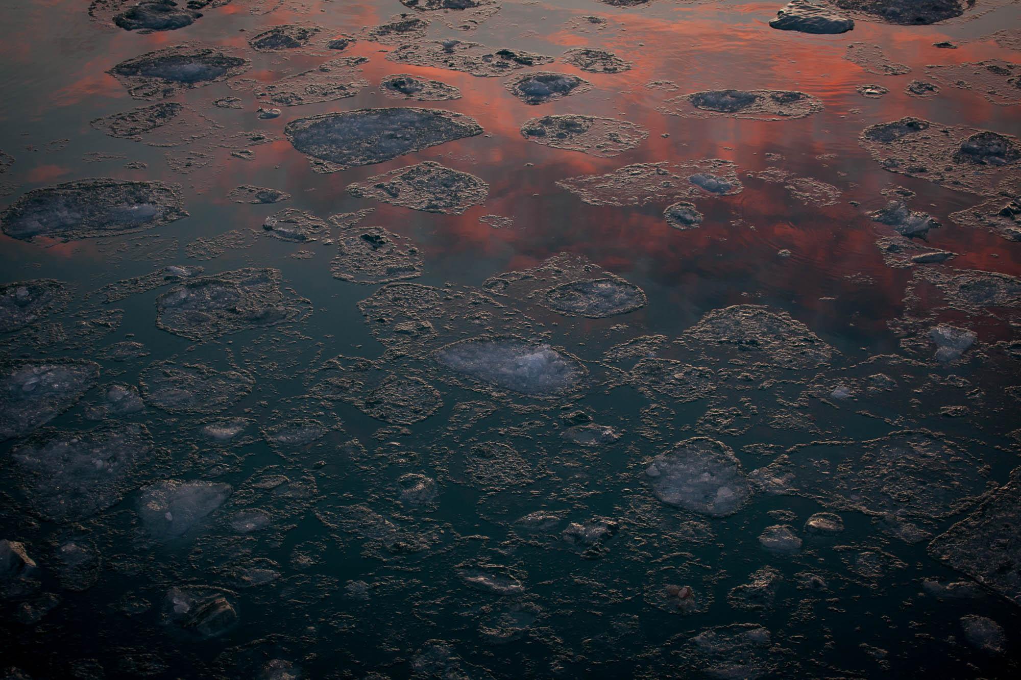 arctic-svalbard-2063.jpg