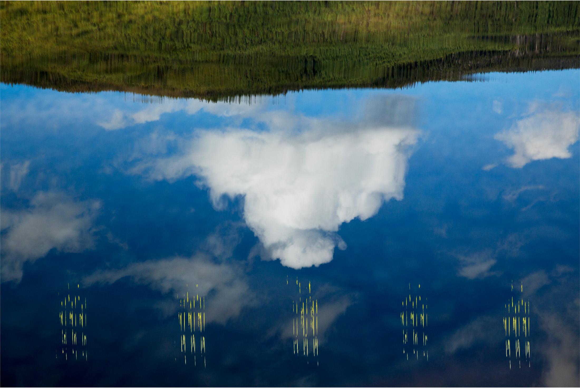 lake reflection, birdsong