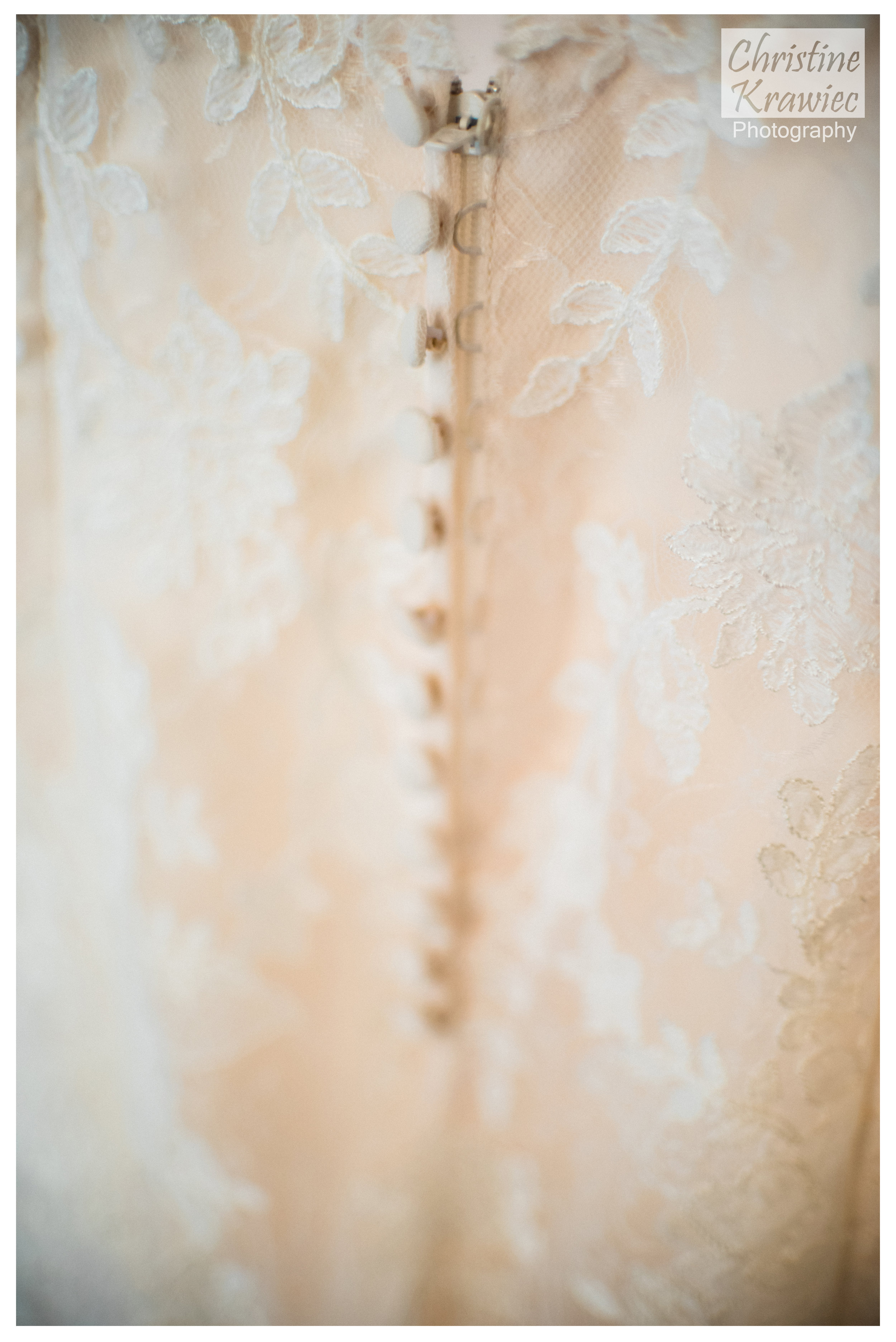 1 bride-lace-buttons-on-dress .jpg