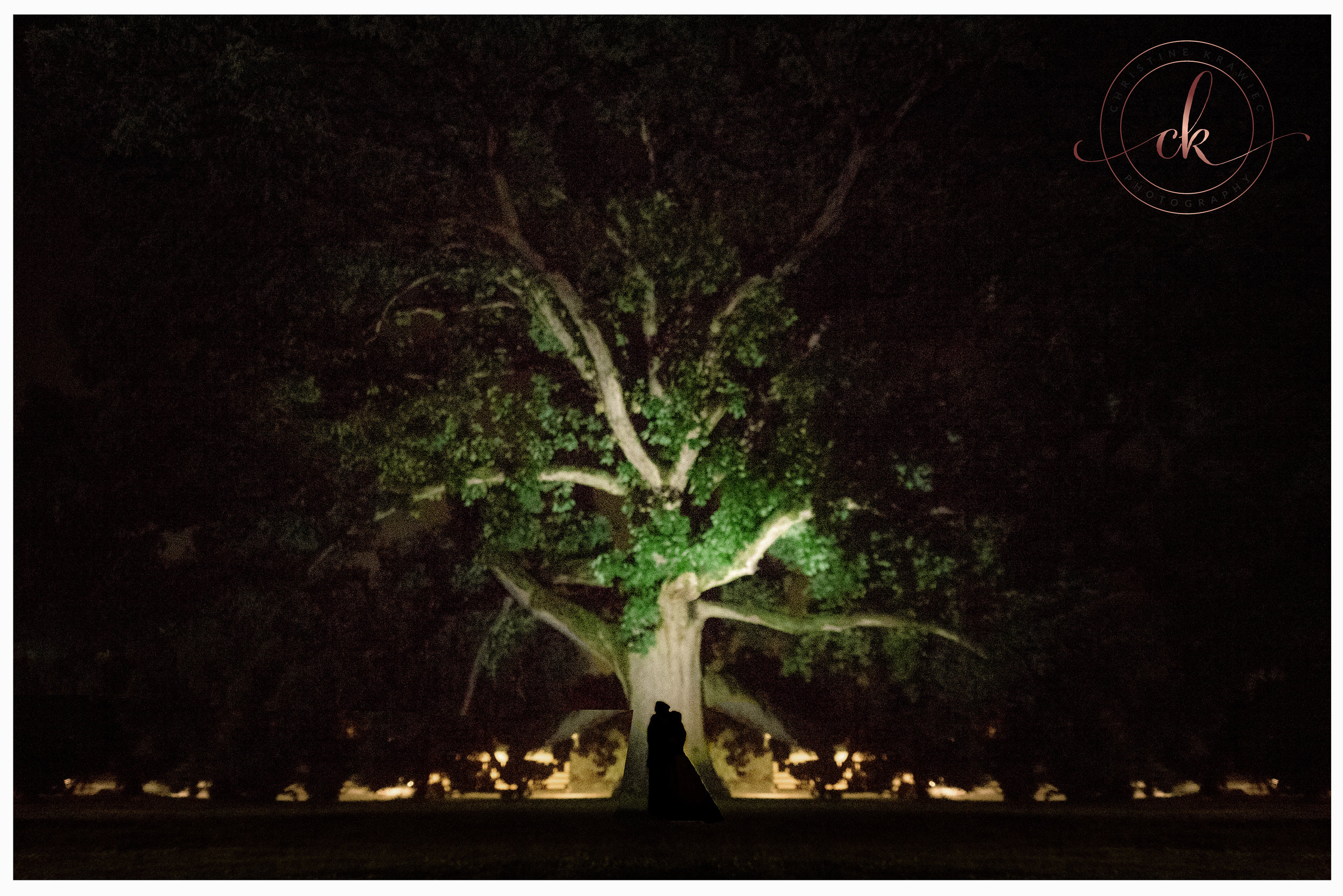 60 Collingswood_ballroom_tree_wedding.jpg