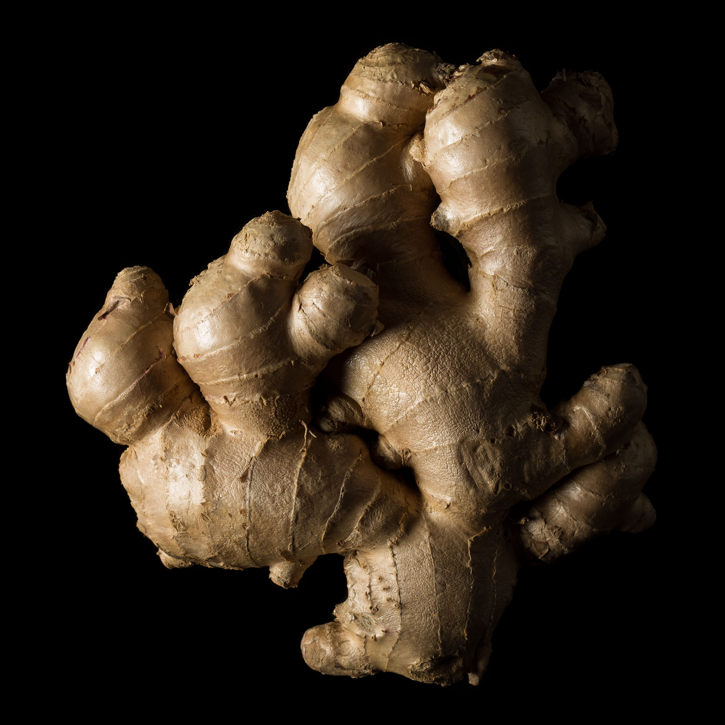 Artistic black and white photo of ginger root