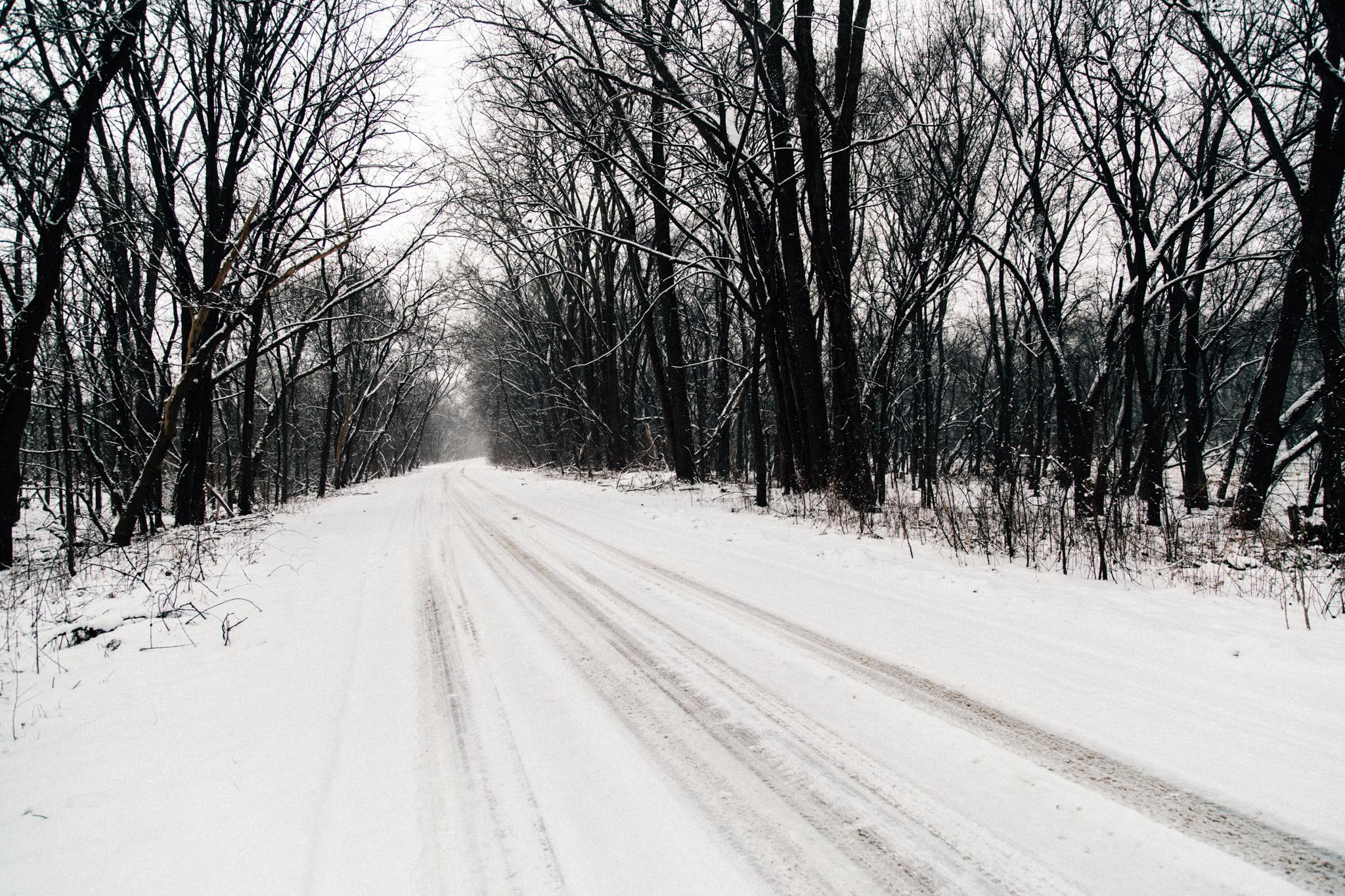 Winter Hike-3.jpg