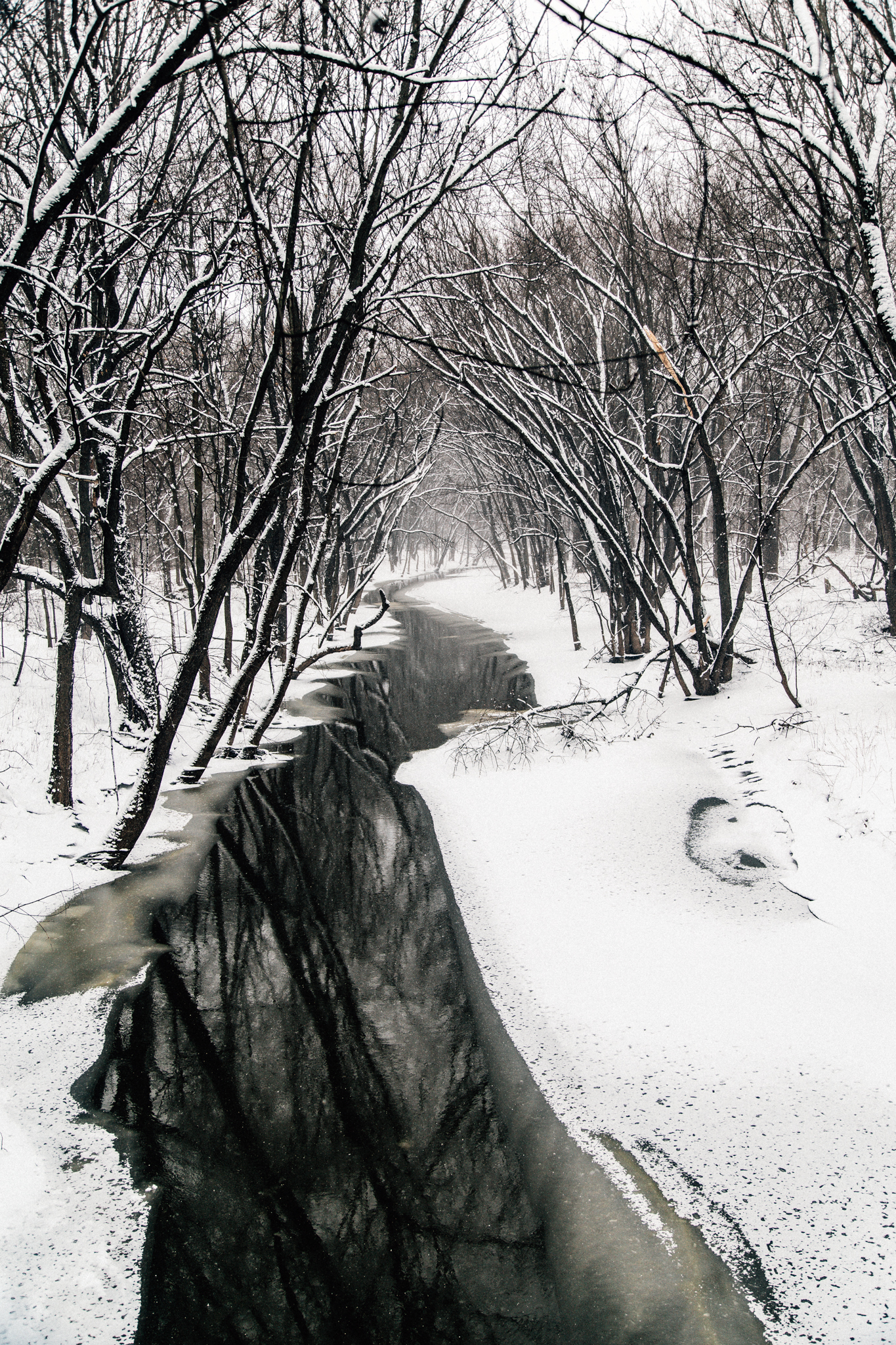 Winter Hike-8.jpg