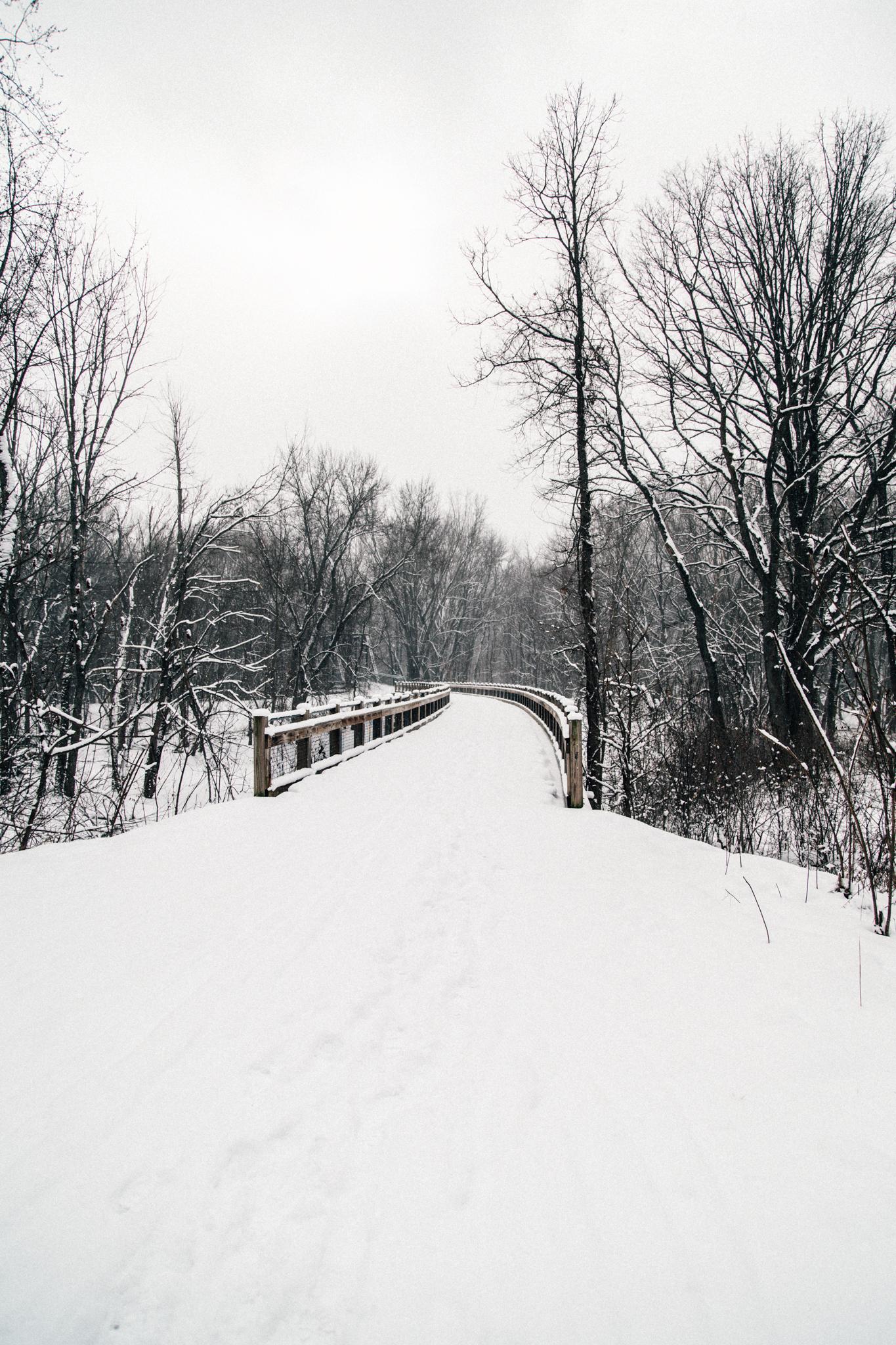 Winter Hike-13.jpg