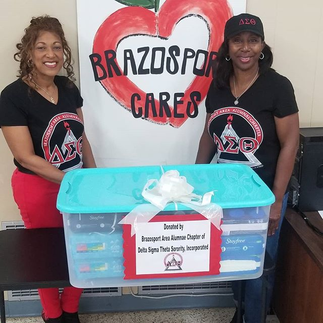 Thank you Delta Sigma Theta Alumnae for your generous donation of baby items and feminine hygiene products! It is because of women like you that our neighbors have to worry less about every day essentials this holiday season!  #thankyou #community #deltasigmatheta #lakejackson #BrazosportCares #Brazosport #freeport #brazoriacounty