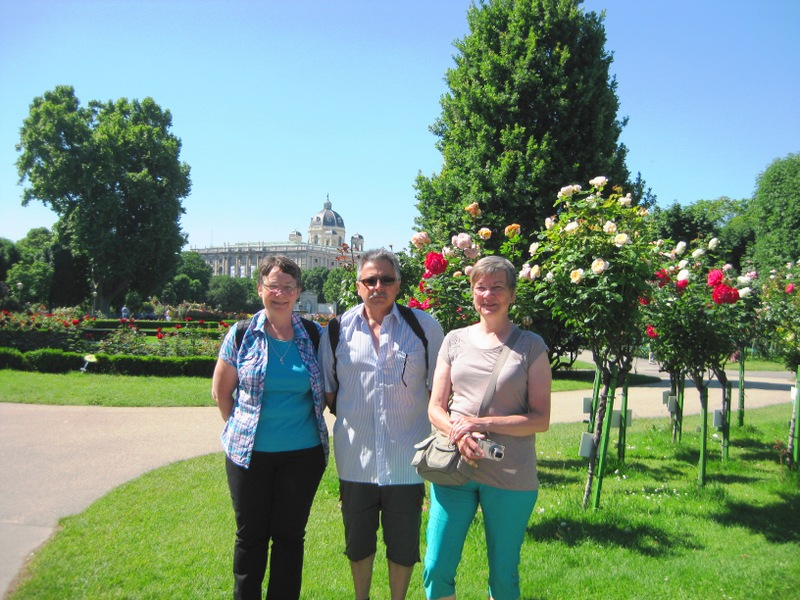 Amongst the roses on a sunny day in the Volksgarten in Vienna