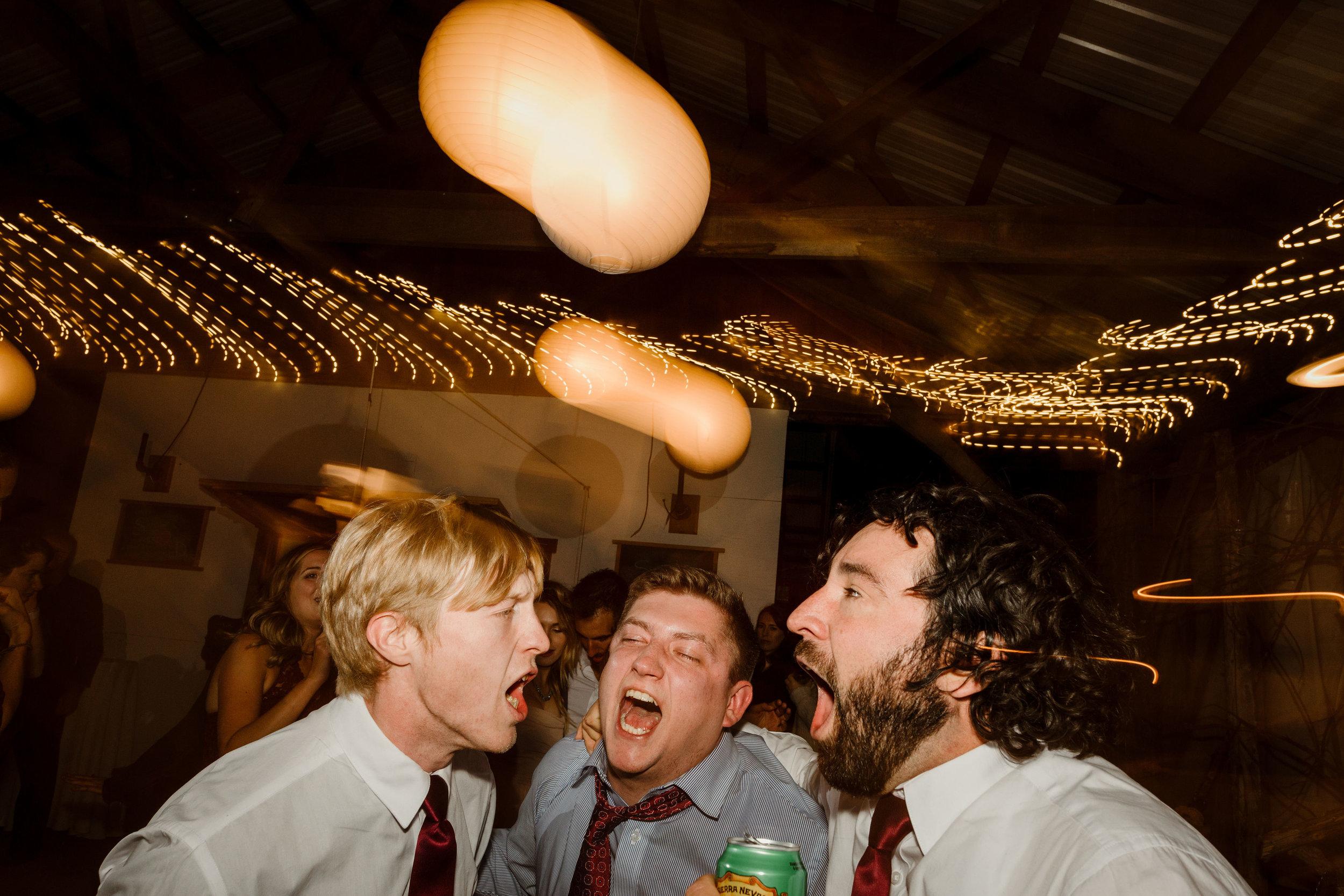 young-love-media-rustic-fall-autumn-wedding-emmerich-tree-farm-hudson-valley-warwick-new-york-reception-375.jpg