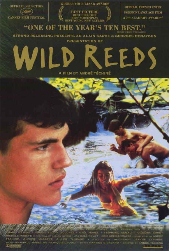 wild reeds .jpg