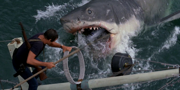 Roy Scheider and Bruce the shark in Steven Spielberg's  Jaws