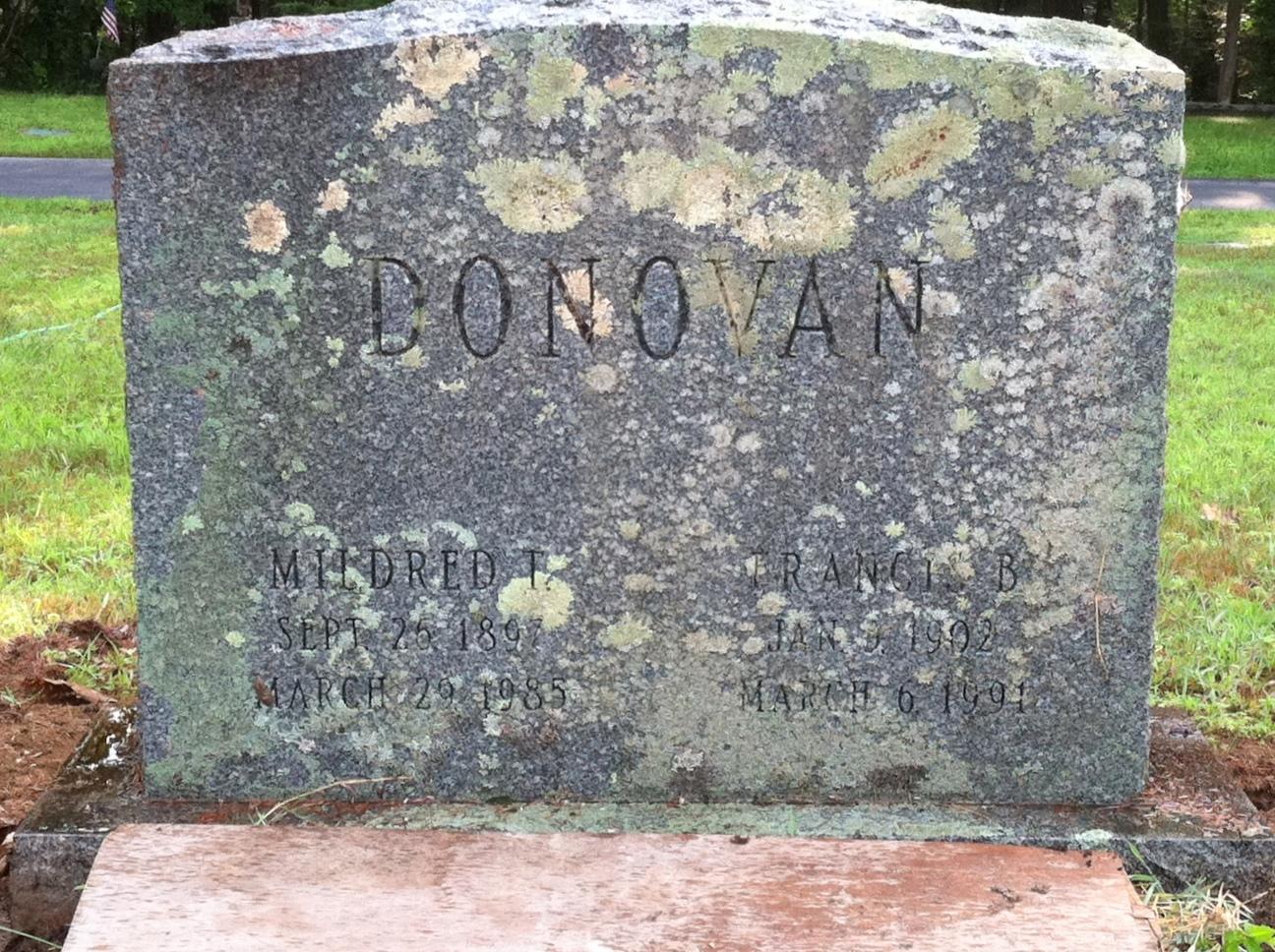 Donovan-Cleaning41.jpg