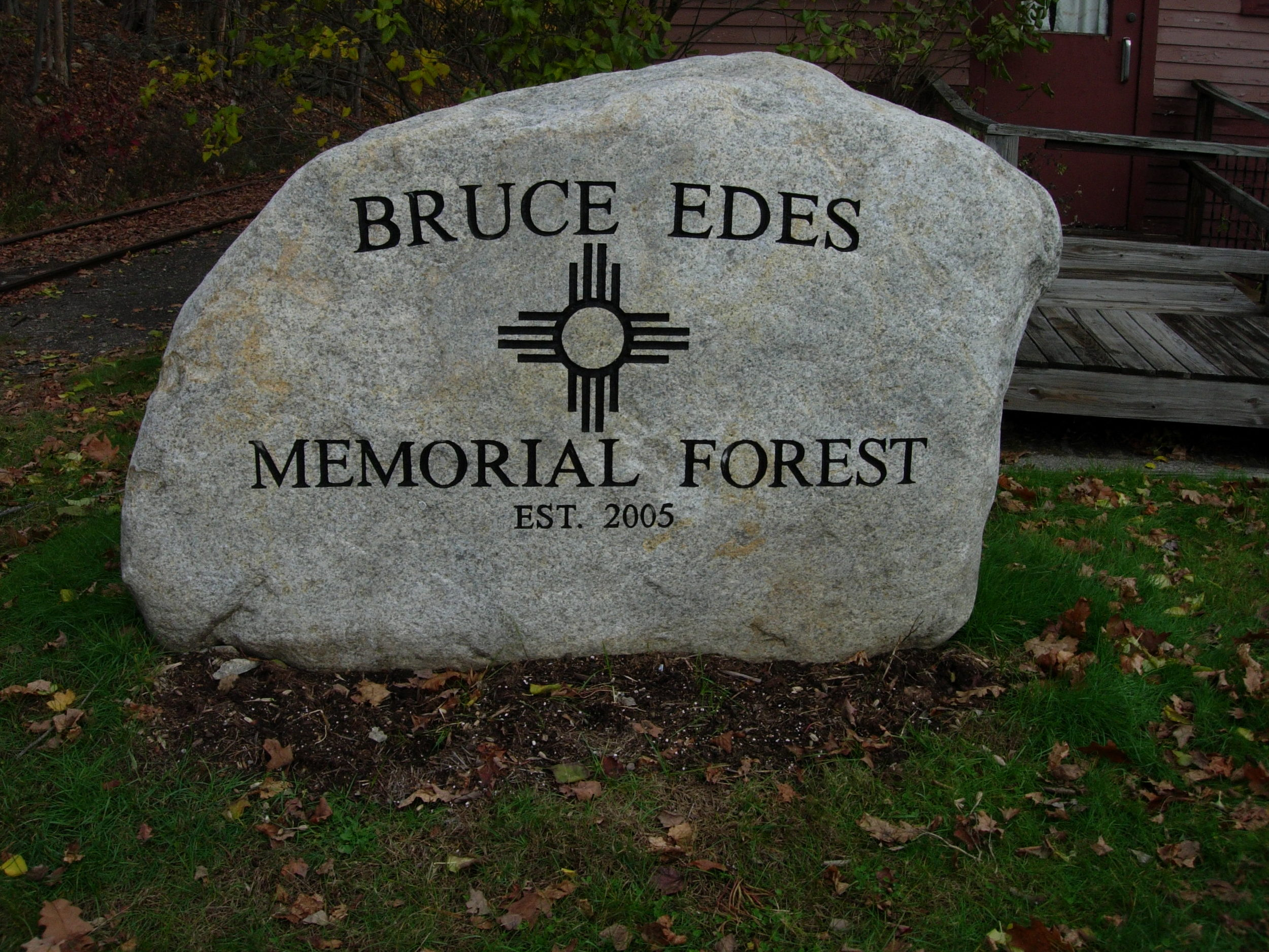 Bruce-Edes-Mem.-Forest-close.jpg