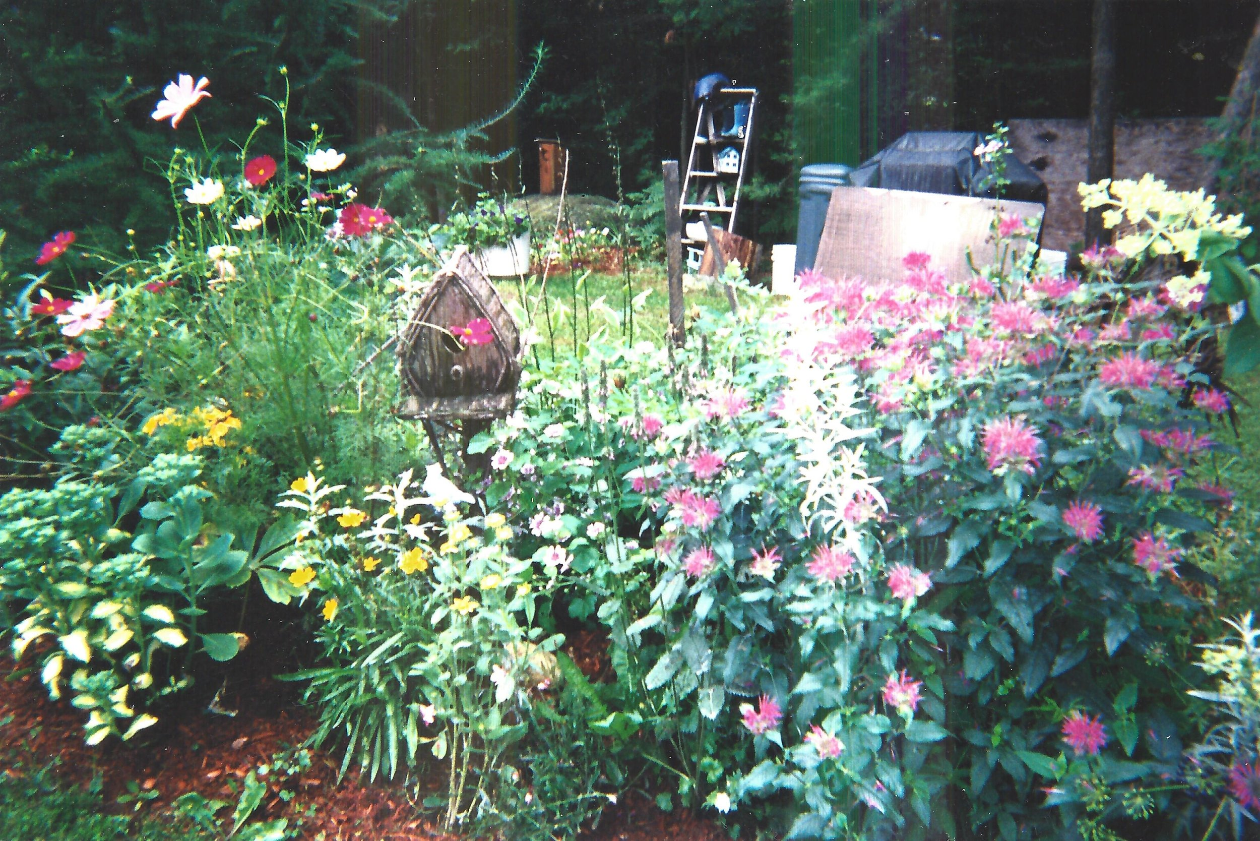 Customer Photo of Family Gardens
